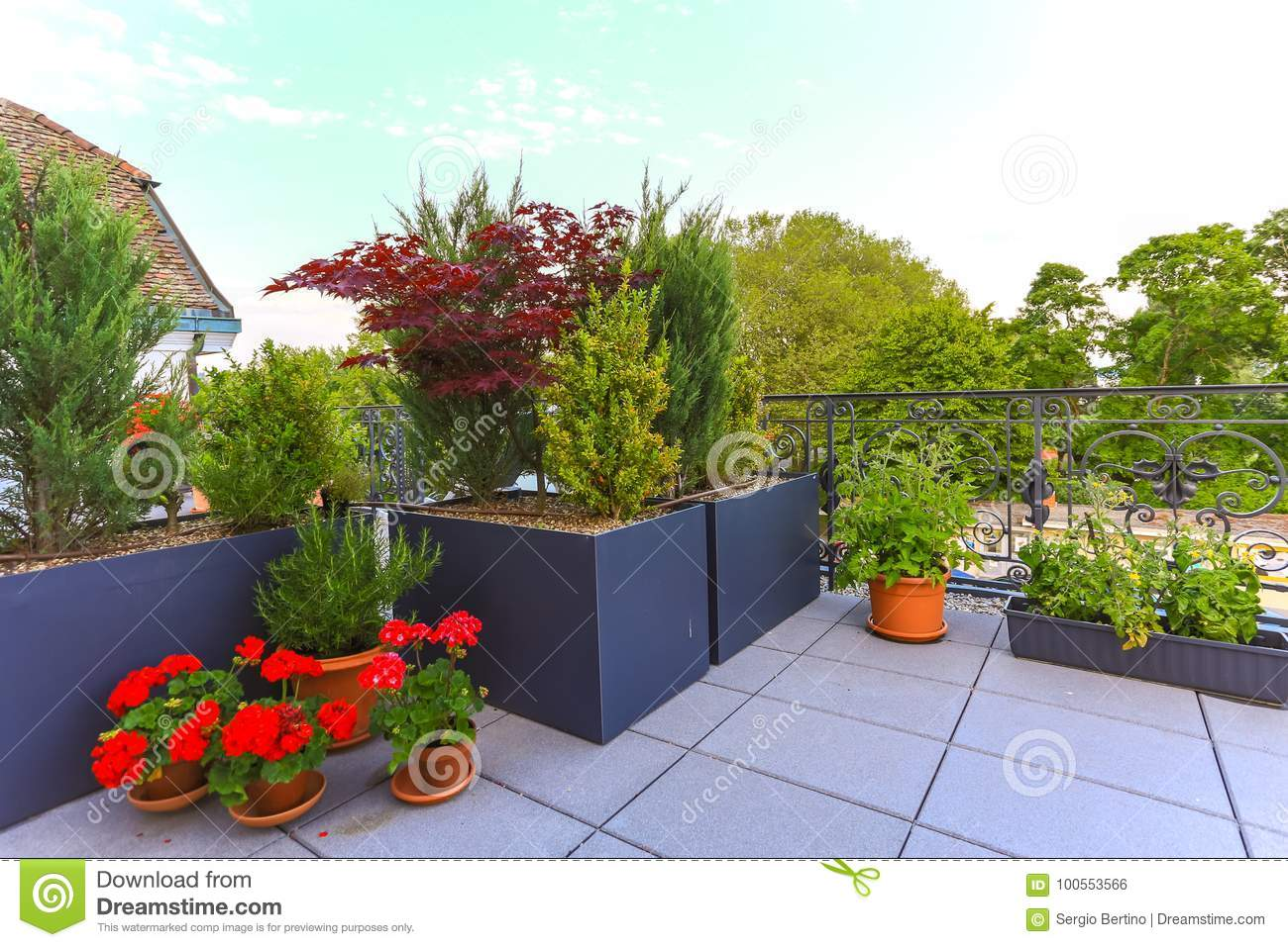 https www dreamstime com decorative potted plants growing patio decorative potted plants growing outdoor terrace patio colorful red image100553566