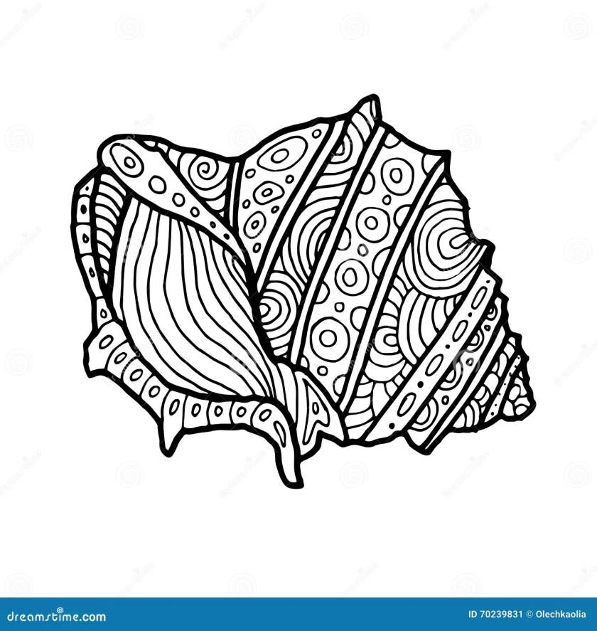 decorative zentangle sea shell illustration. outline