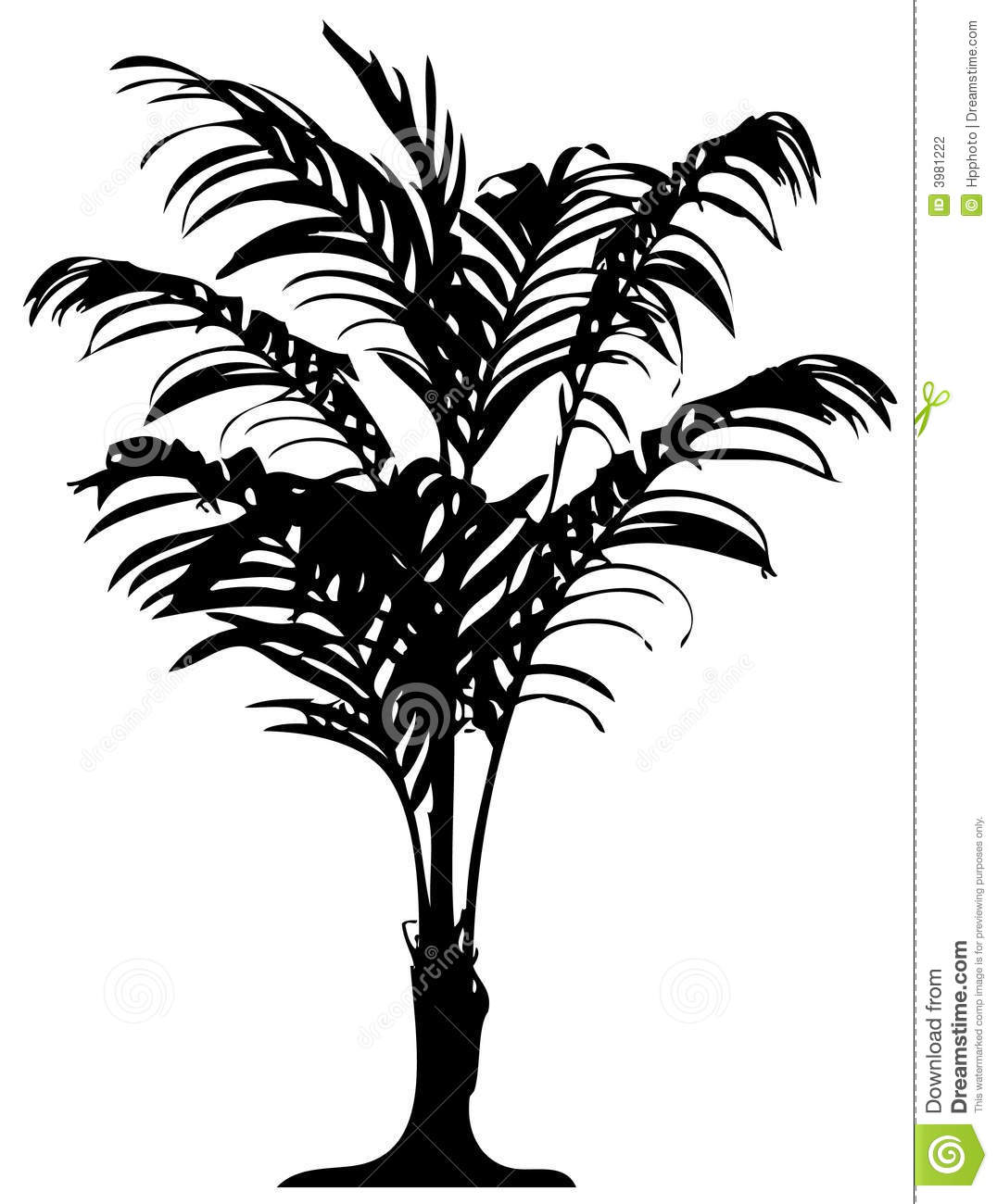Detailed Palm Tree Stock Vector Illustration Of Resort