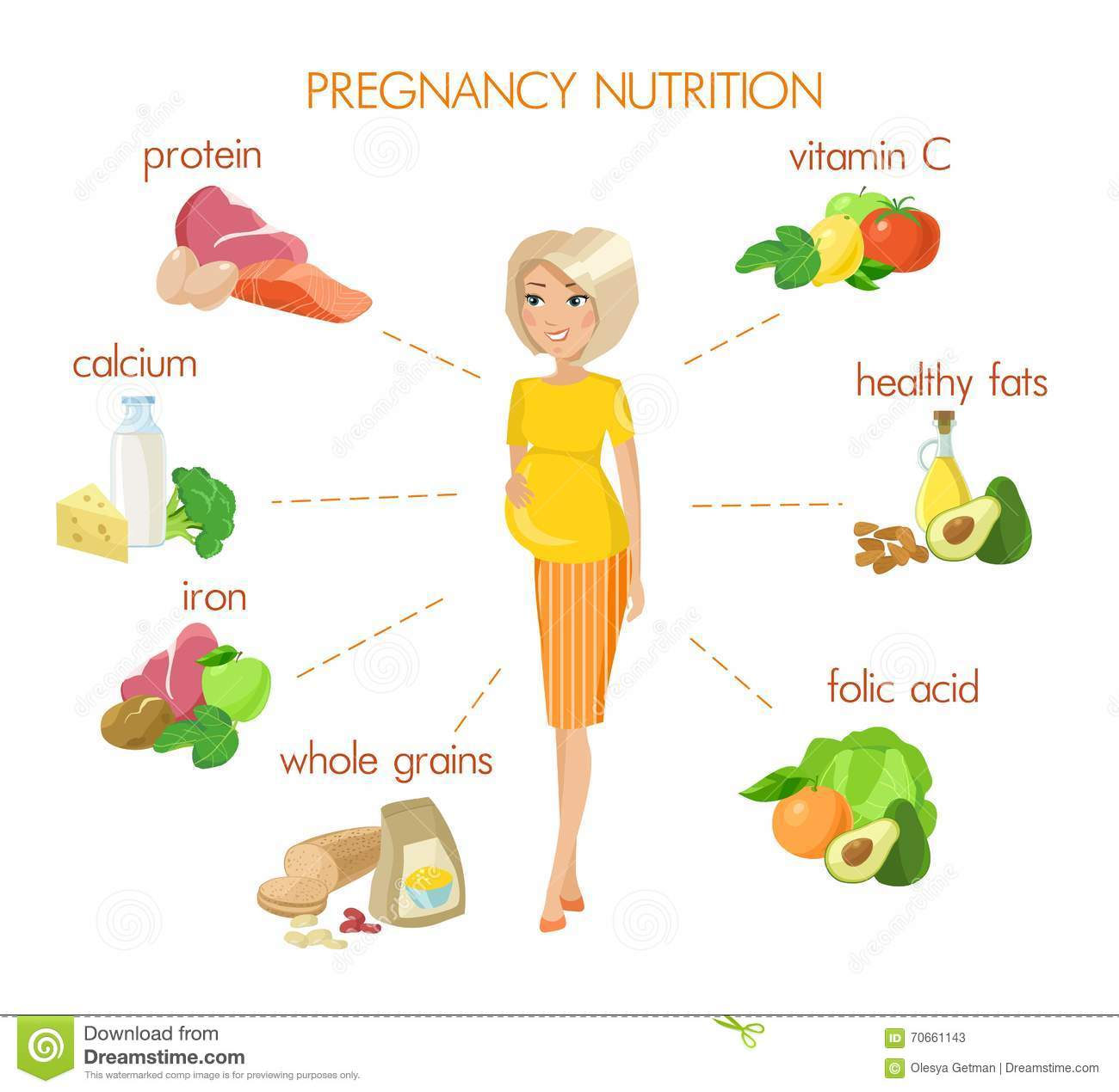 Detailed Pregnancy Nutrition Infographic Stock Vector