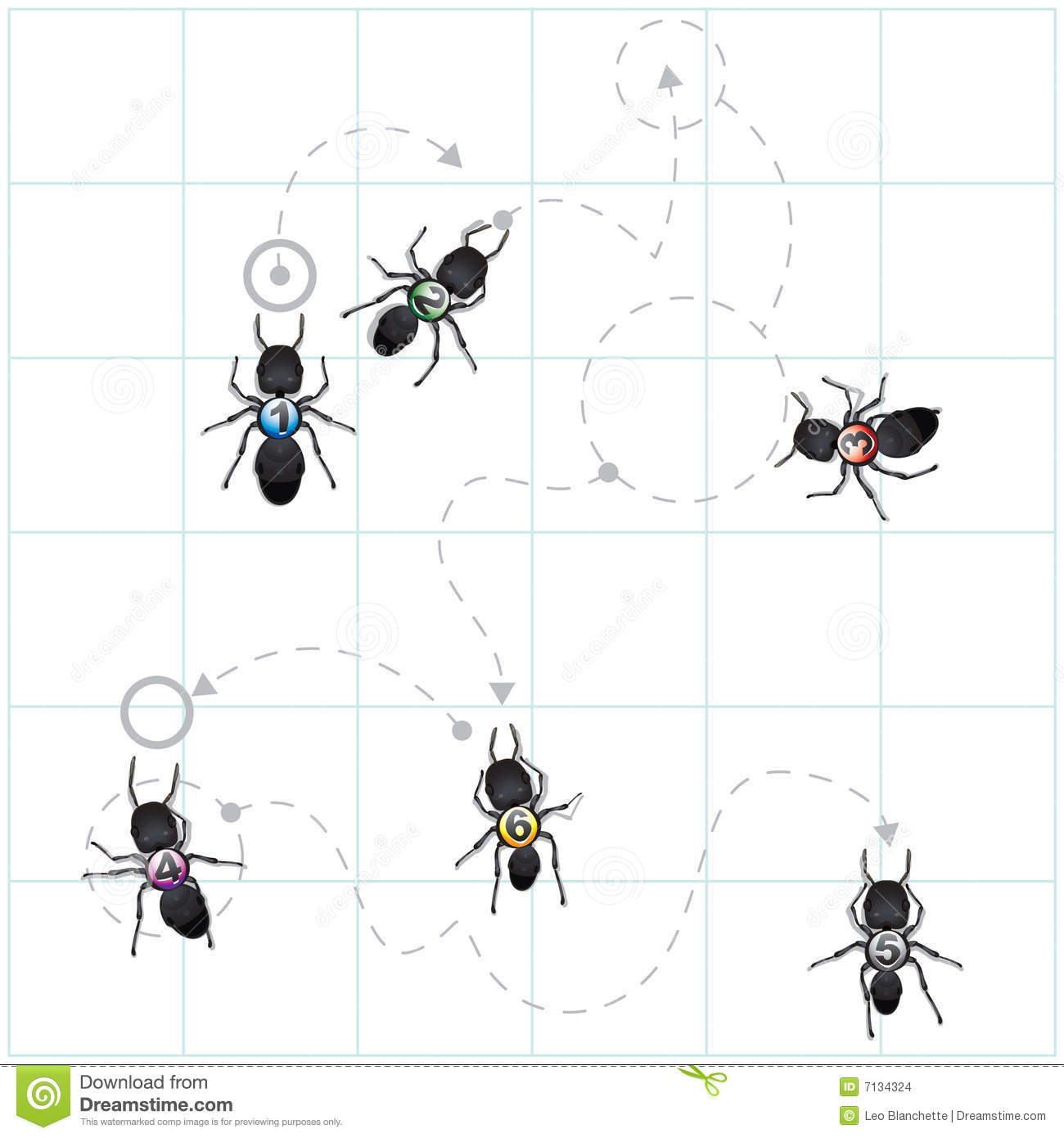 Diagram Of Ant Patterns Stock Vector Illustration Of Path