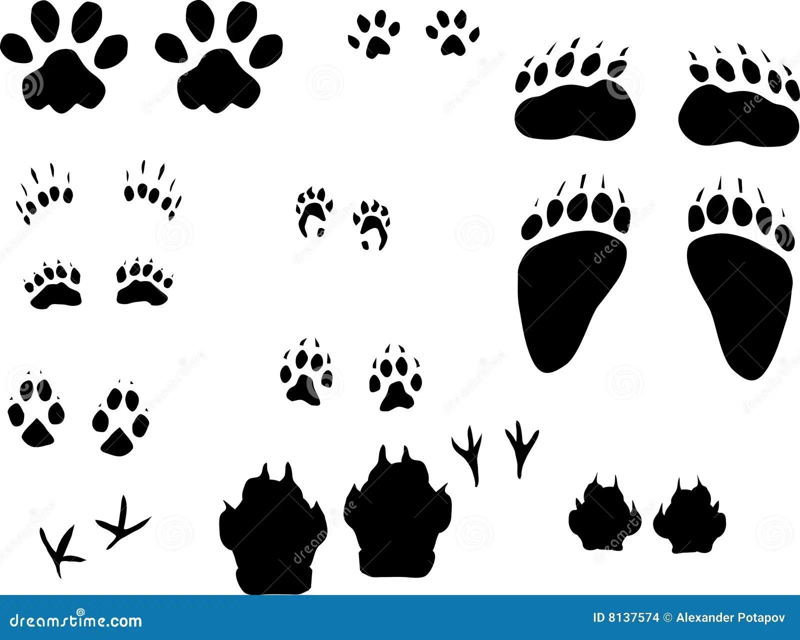 Different Animals Tracks Set Stock Images