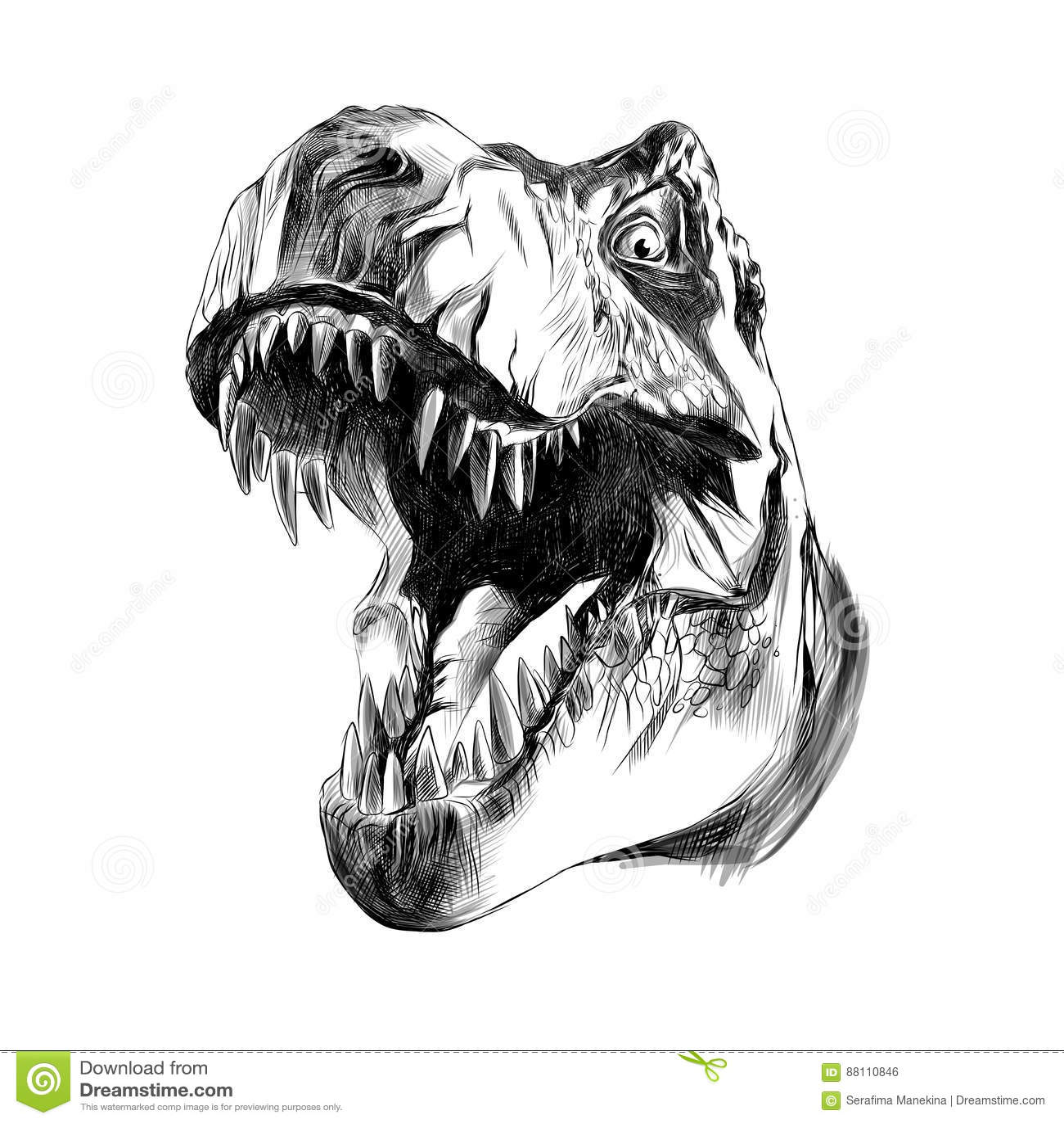 Dinosaur Head Tyrannosaurus Stock Vector
