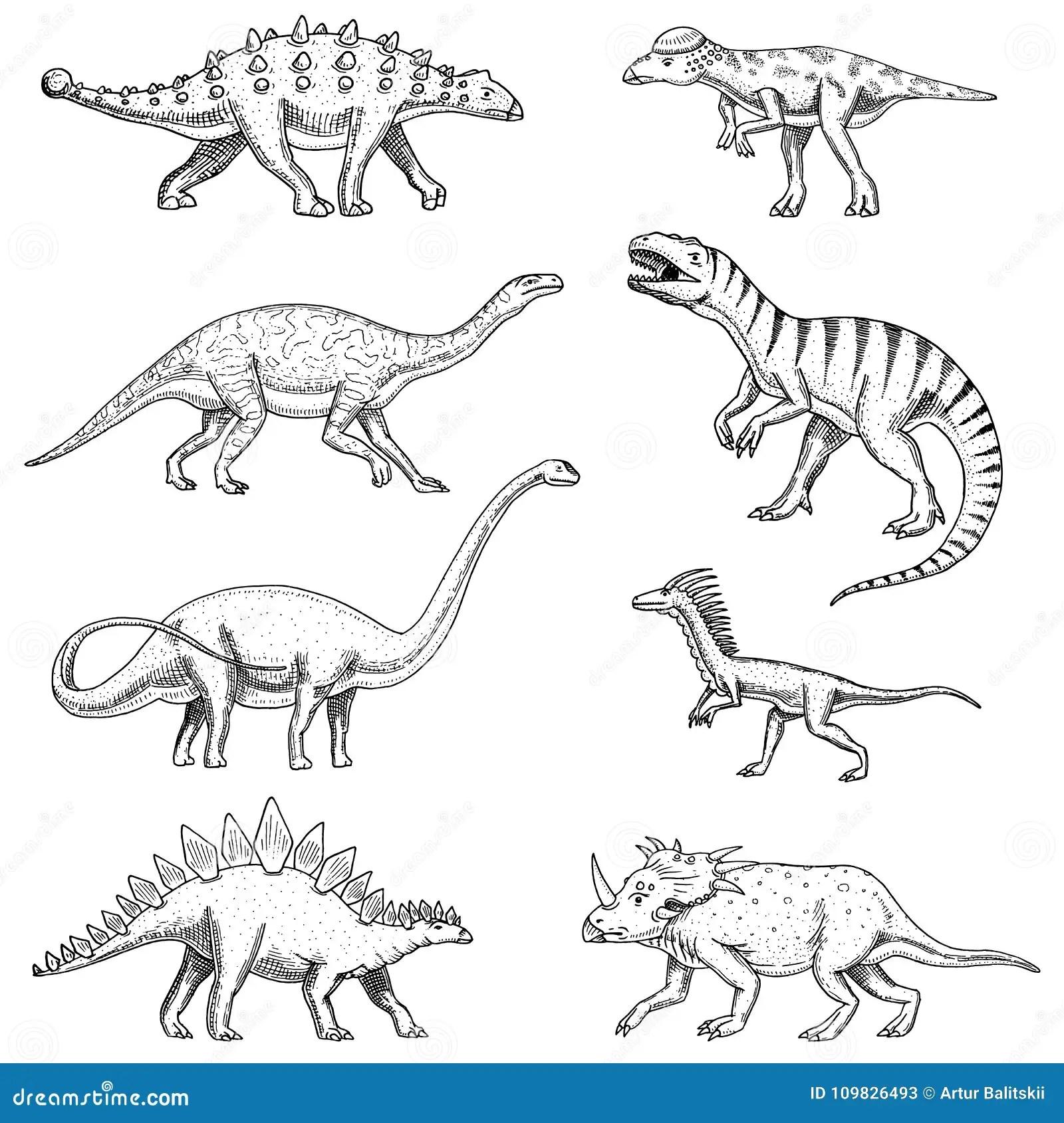 Diplodocus Kleurplaat Kidkleurplaat