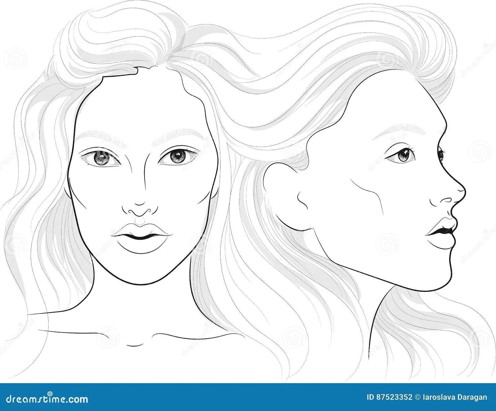Dirigez Le Portrait D Un Profil Du S De Femme Et D Un
