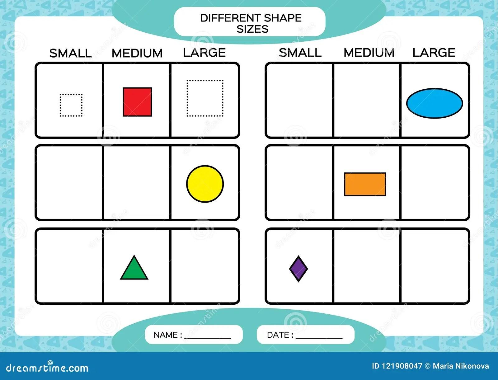 Diversos Tamanos De La Forma Pequeno Medio Grande Aprendizaje De Dimensiones De Una Variable