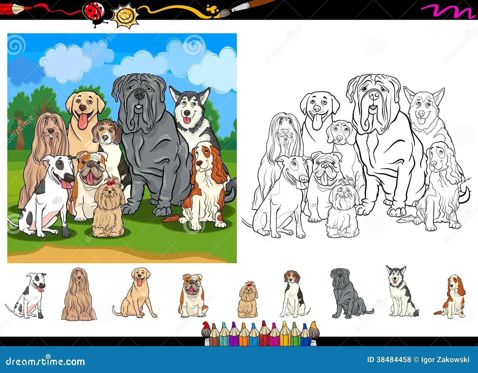 dog breeds cartoon coloring page set royalty free stock photos