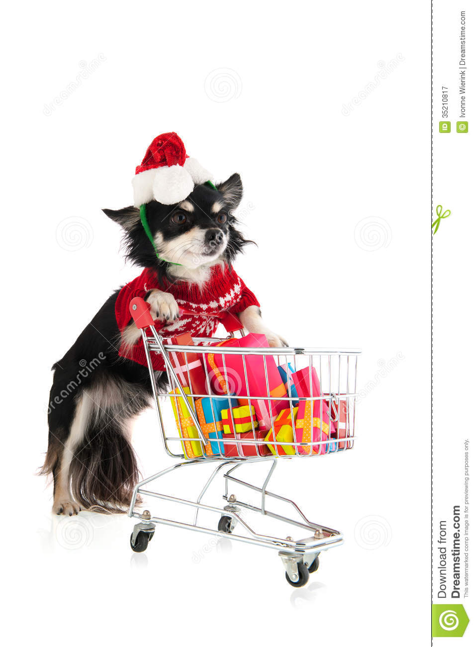 Dog Shopping For Christmas Royalty Free Stock Photography