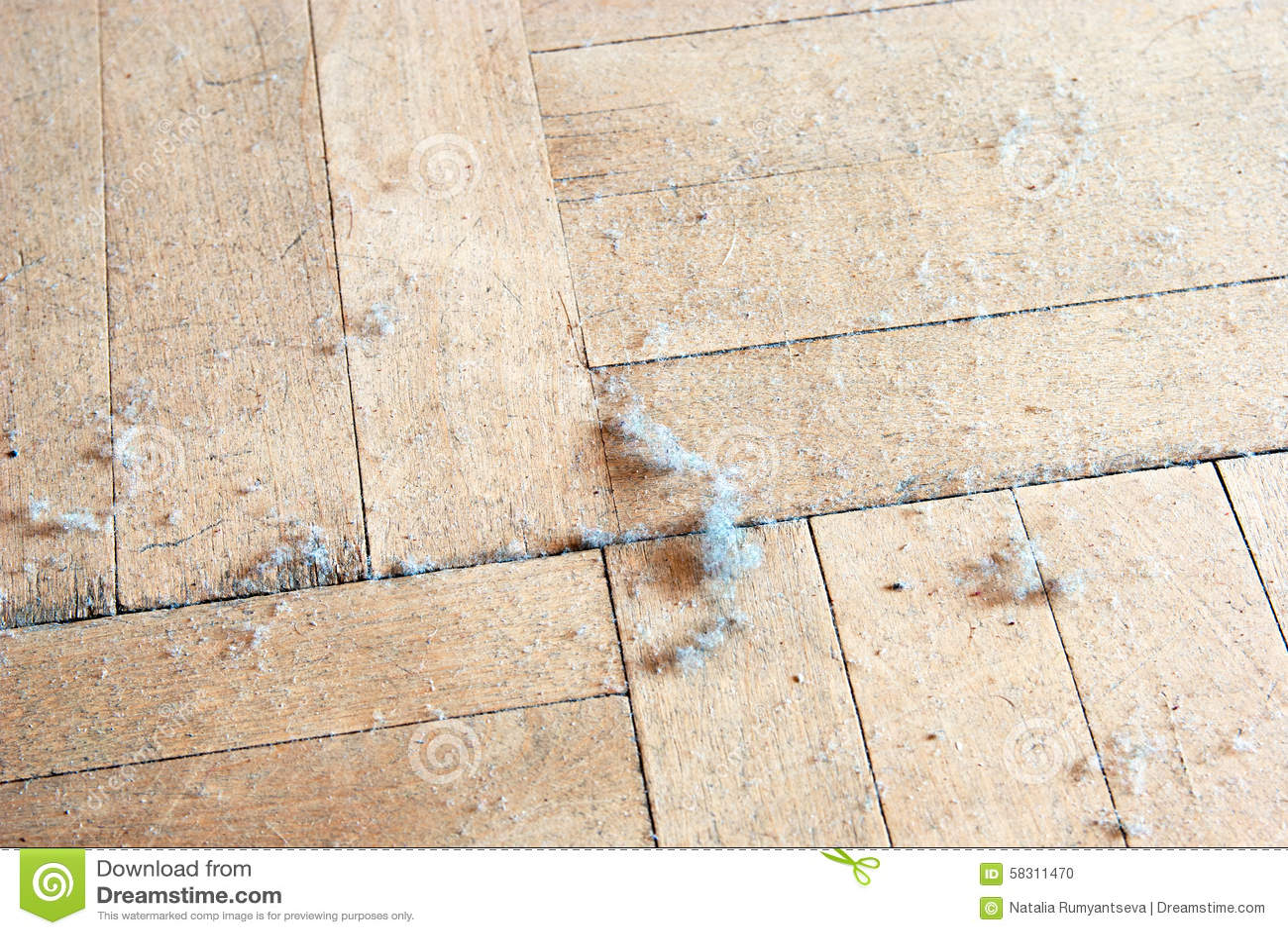 Dust On The Floor Stock Photo Image 58311470