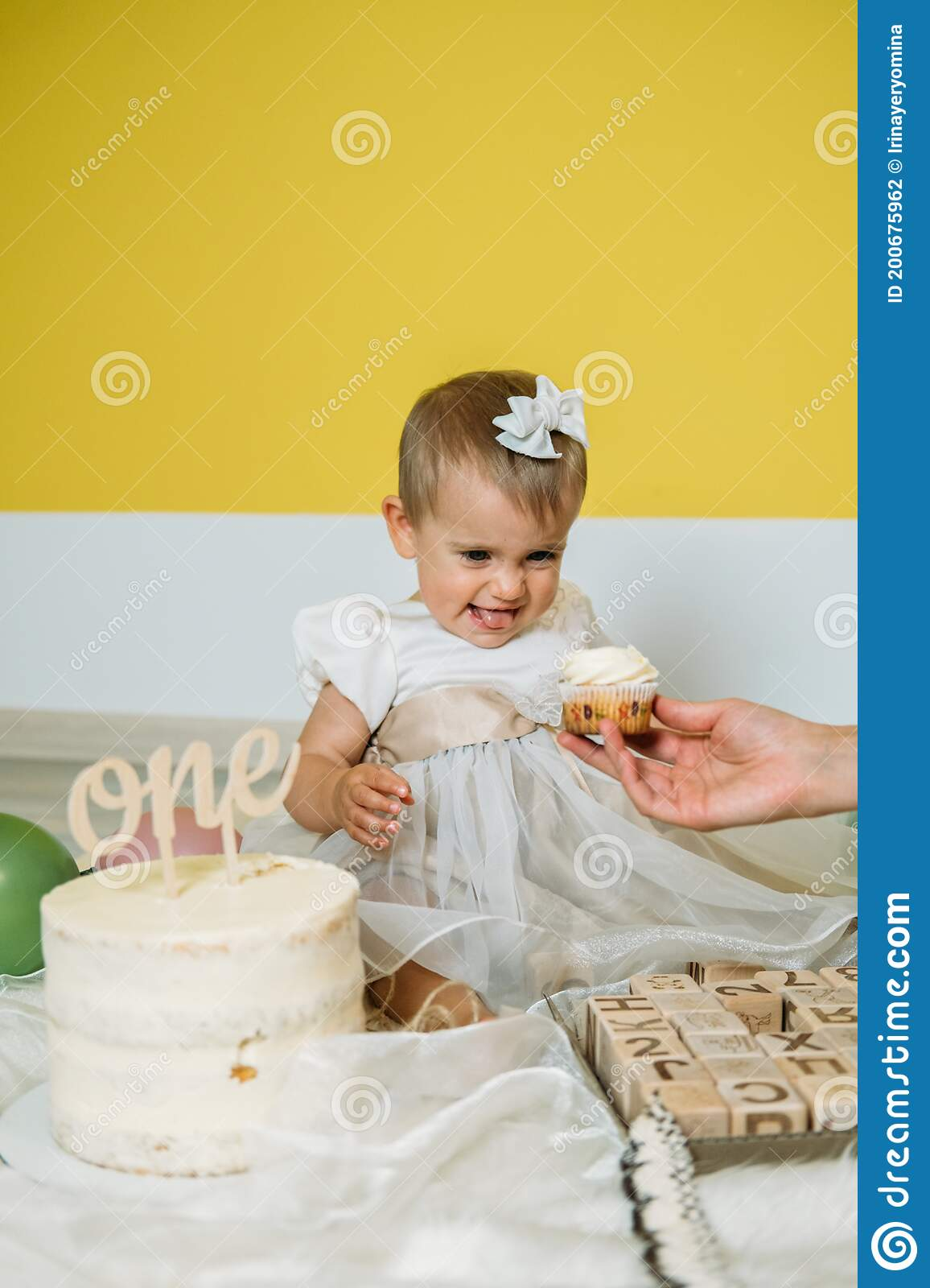 Eco Friendly Baby First Birthday Party With Cake 1st Birthday Ideas With Natural Decoration Sustainable Eco Friendly Stock Photo Image Of Fancy Flowers 200675962
