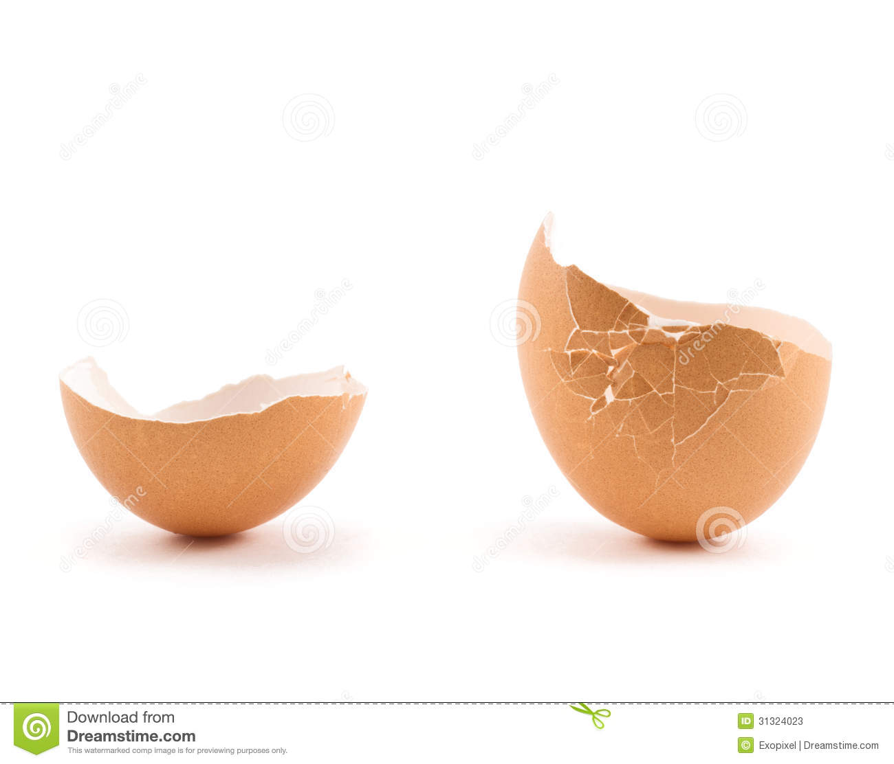 Egg Shell Cracked In Two Parts Stock Image