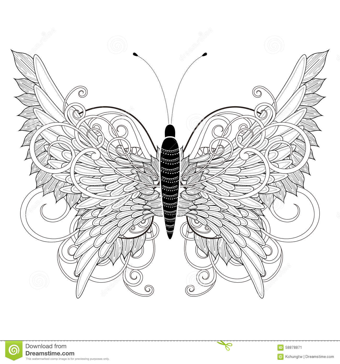 Elegant Butterfly Coloring Page Stock Illustration Image