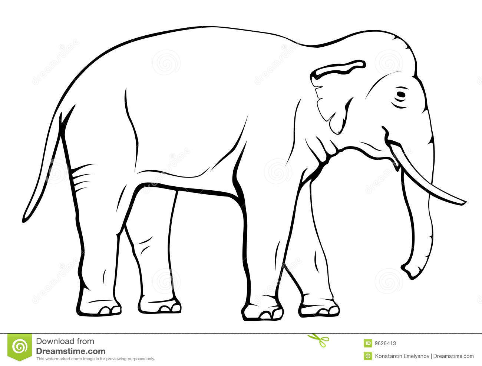 Elephant Stock Vector Illustration Of Wildlife Mammal