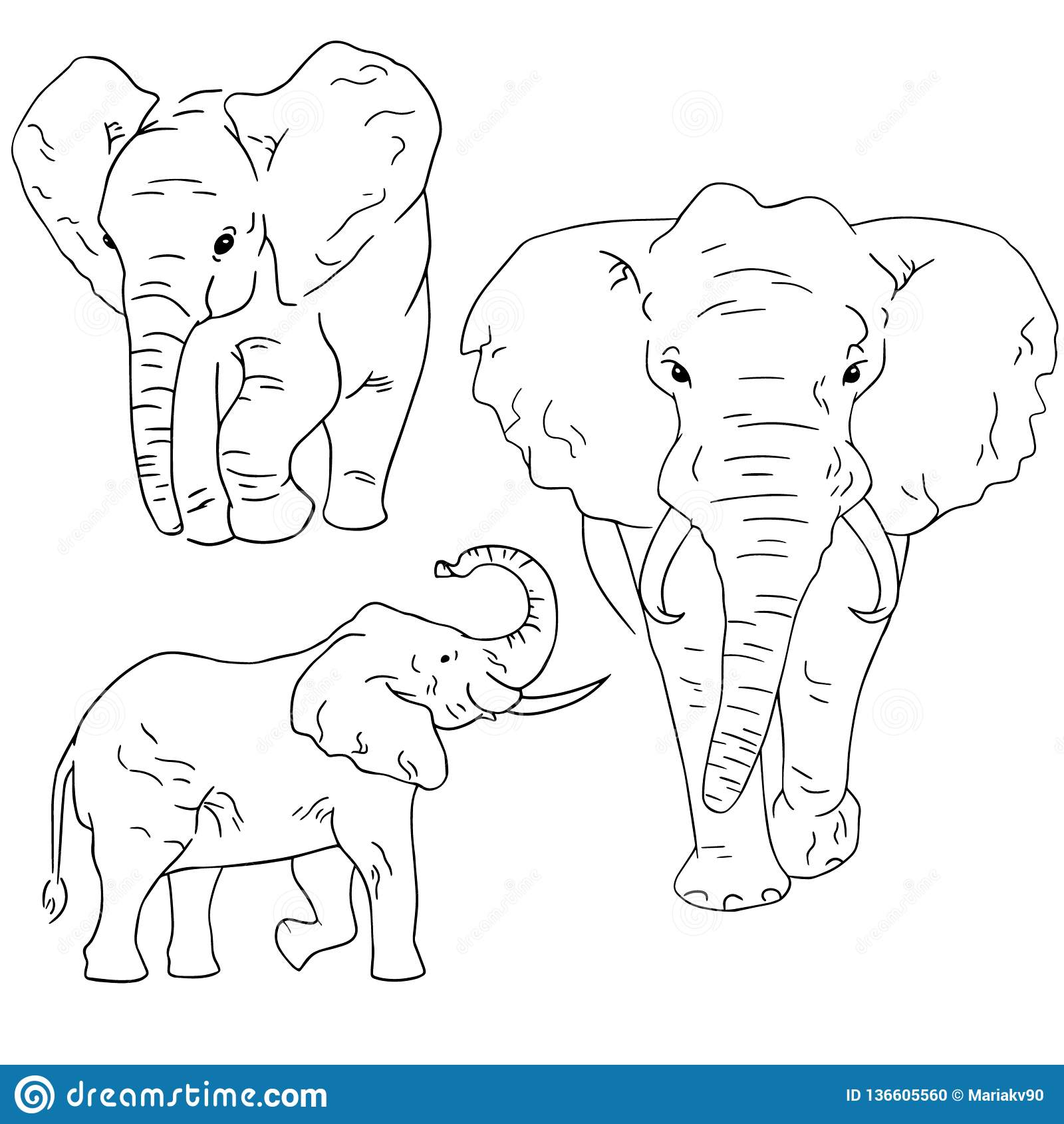 Elephant Sketches On White Background Set Of Sketching Animals Drawn By Freehand Stock Vector Illustration Of Powerful Elephant 136605560
