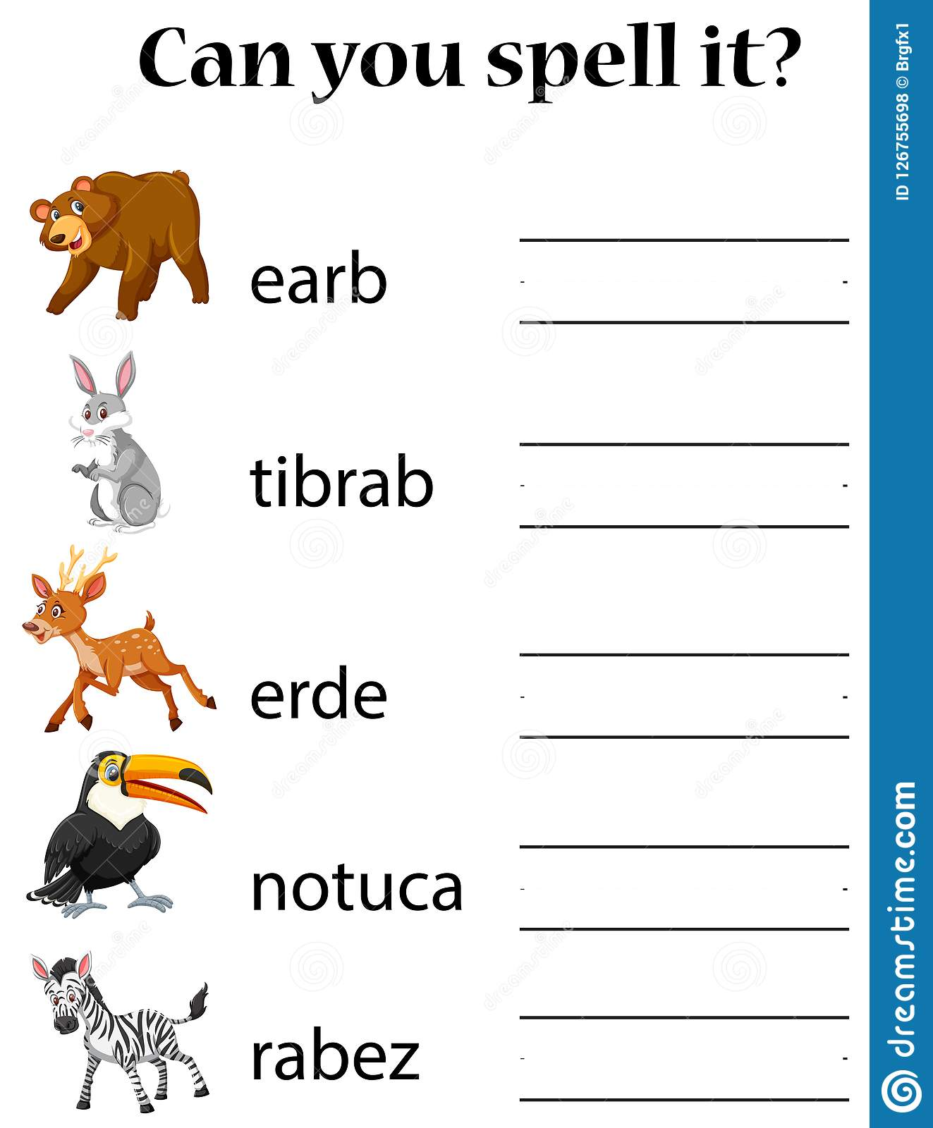 English Animal Spell Worksheet Stock Vector