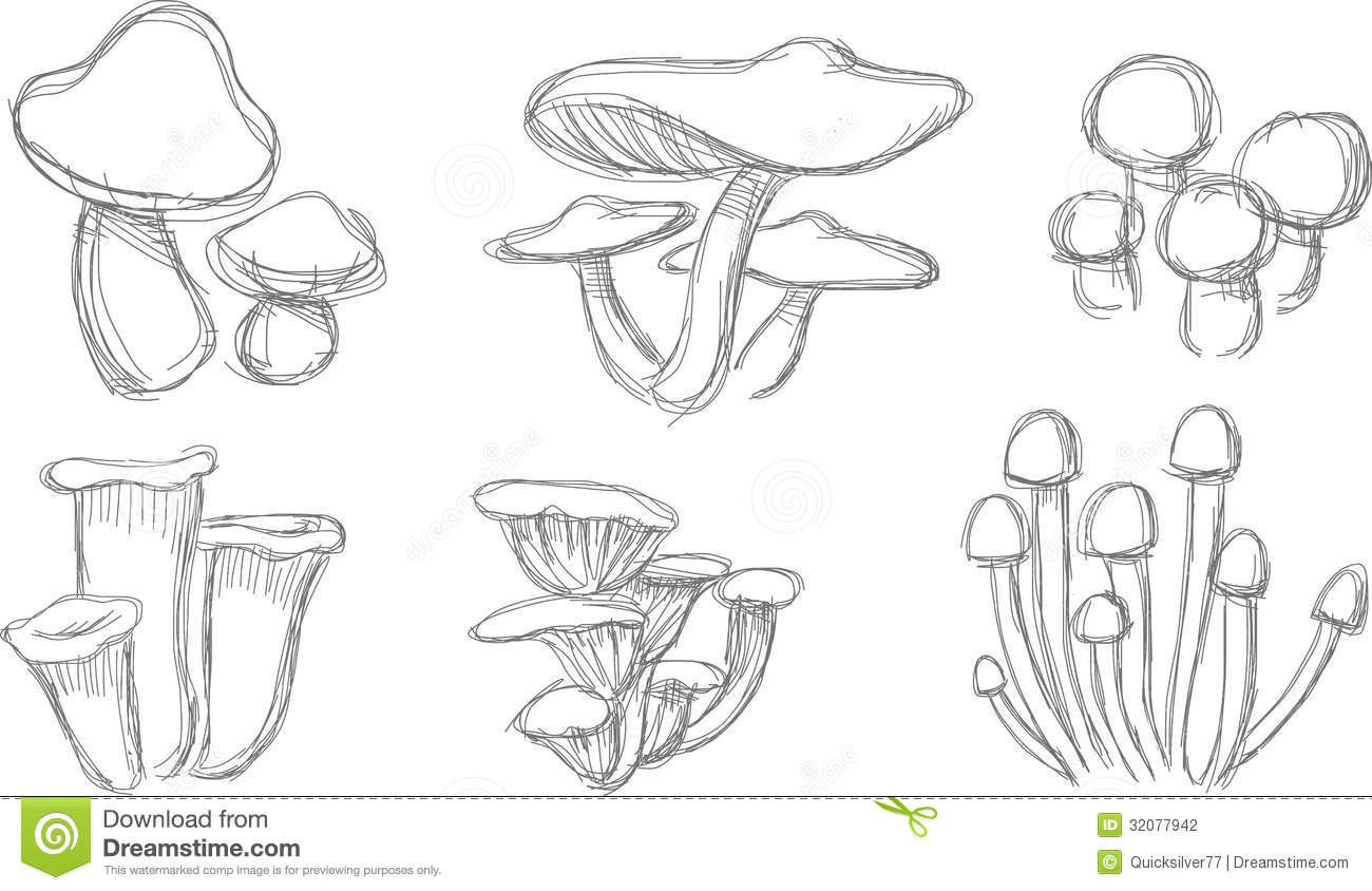 Ensemble De Croquis De Champignon Illustration Stock