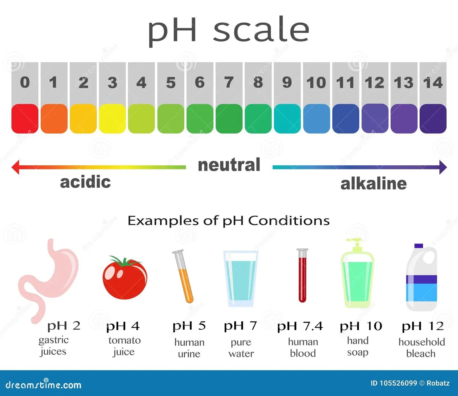 Escala Del Valor De Ph Para Las Soluciones Acidas Y