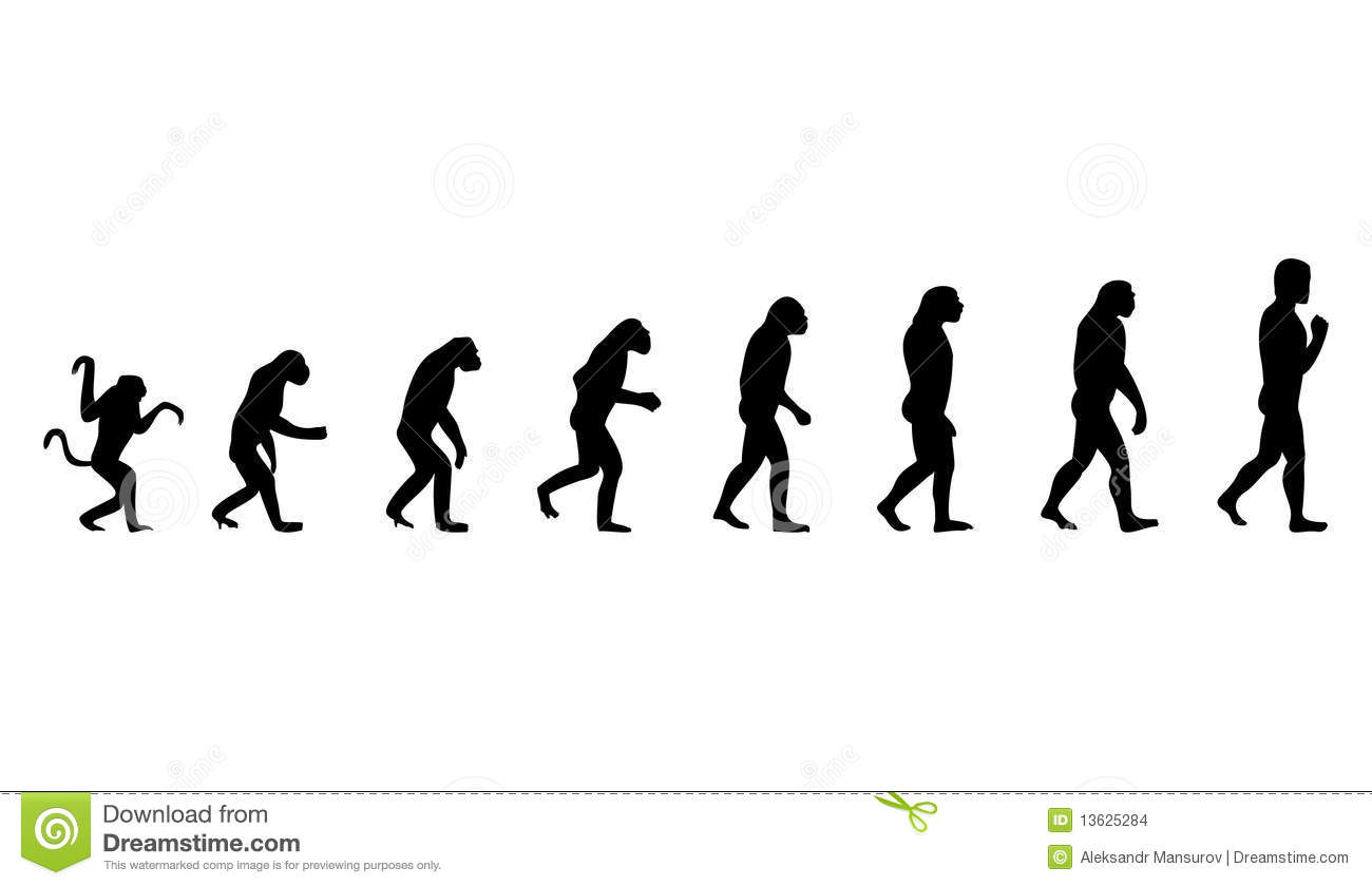 Evolution Of The Person Stock Vector Image Of Black