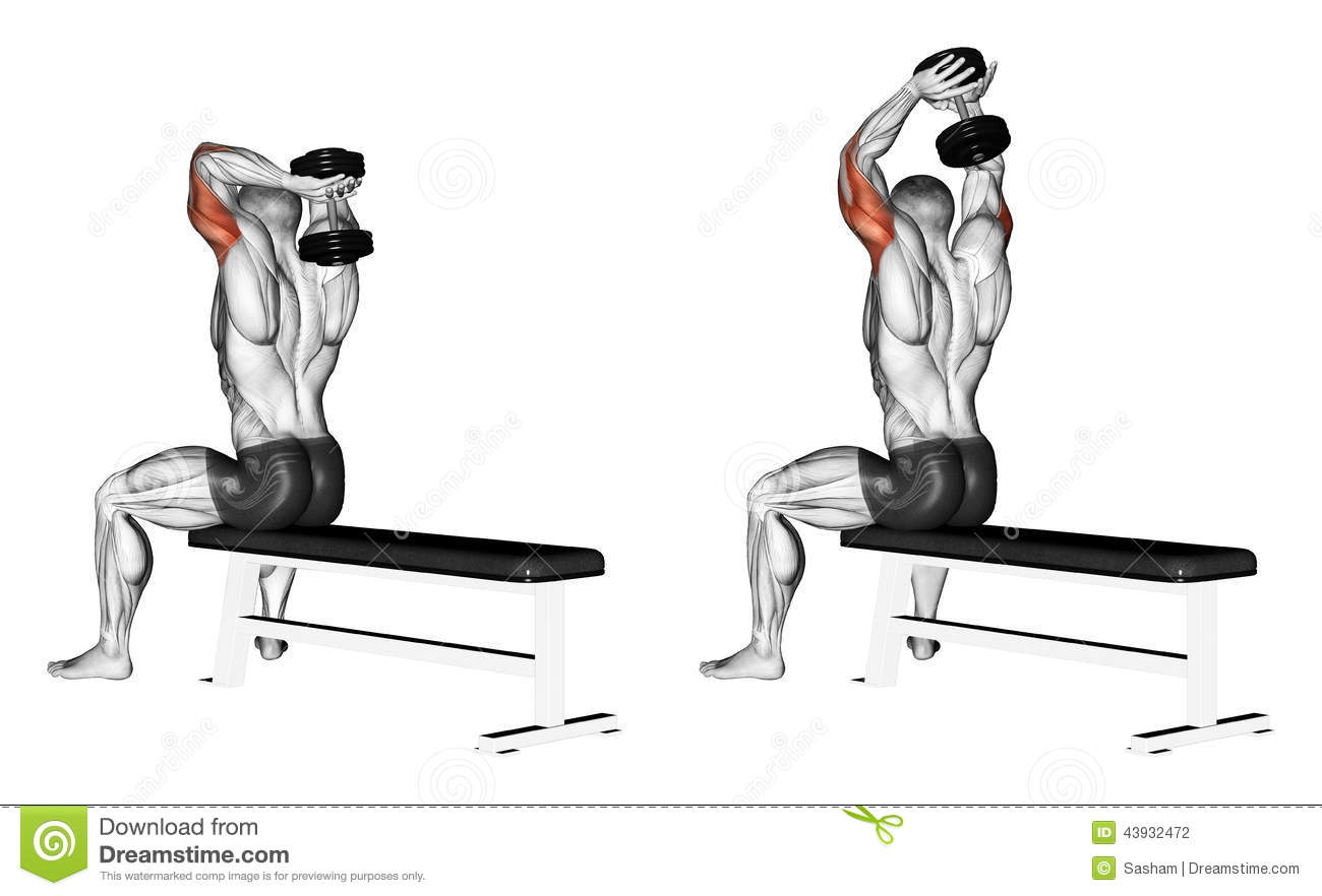 Exercising Extension Arms With A Dumbbell From Be Stock