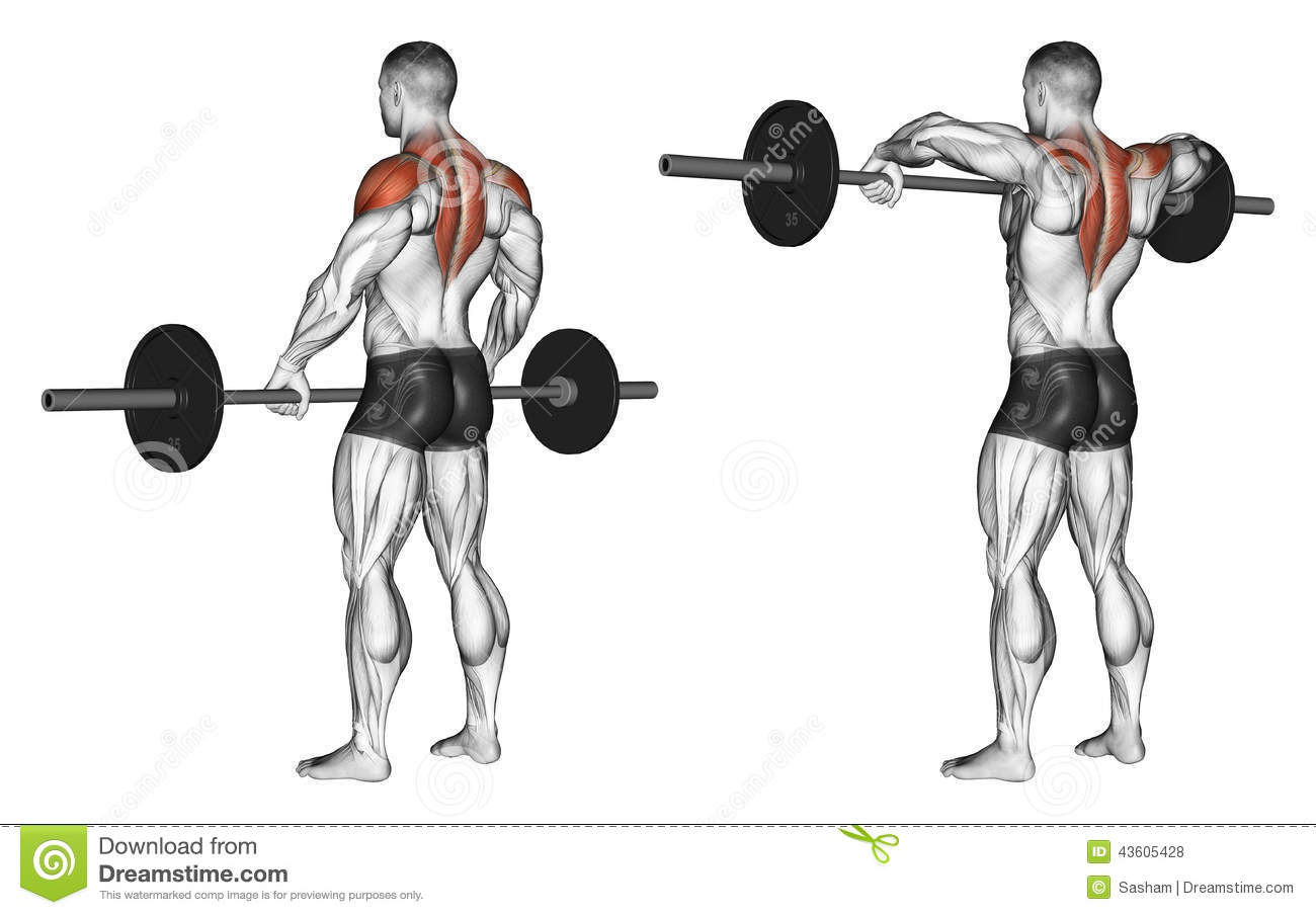Exercising Front Shoulder Broach With Barbell