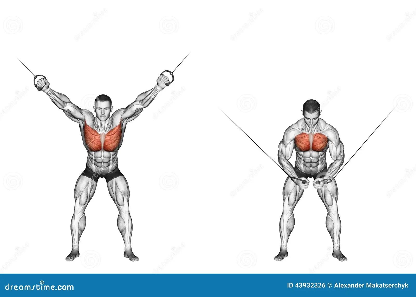 Exercising La Reduccion De La Parte Superior Bloquea La