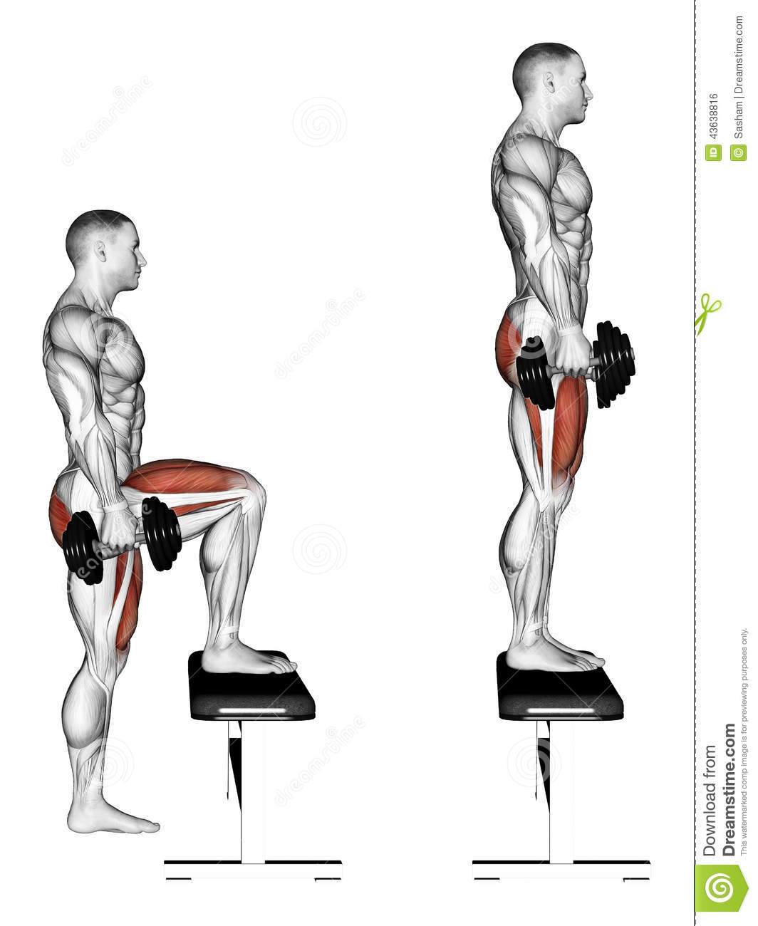 Exercising Pacing With Dumbbells On Bench Stock