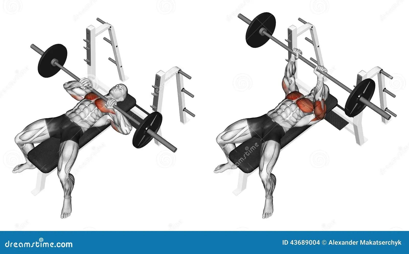 Exercising Rod Narrow Grip Bench Press Lying On Stock
