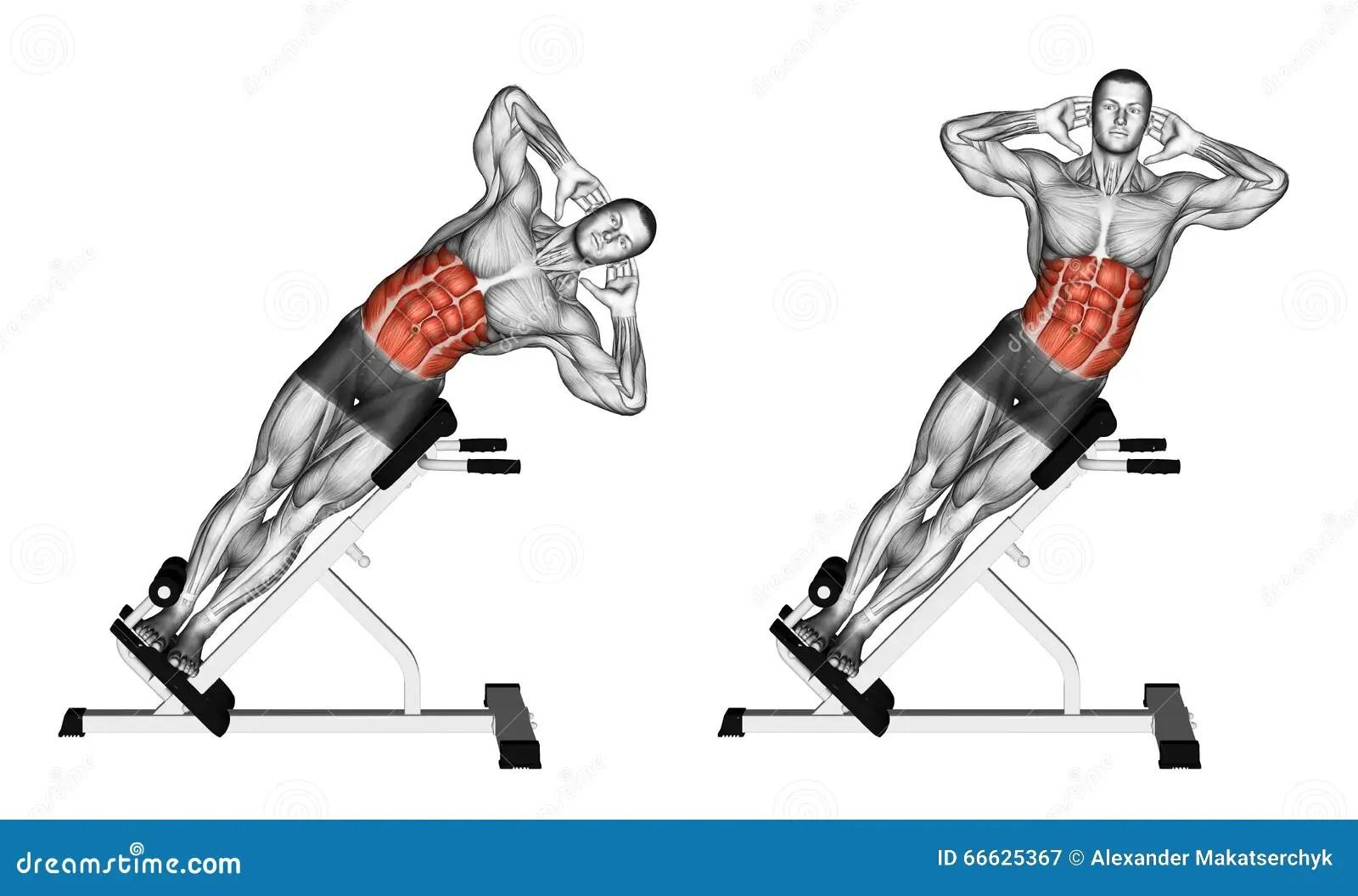 Exercising Side Bend On Bench Stock Illustration