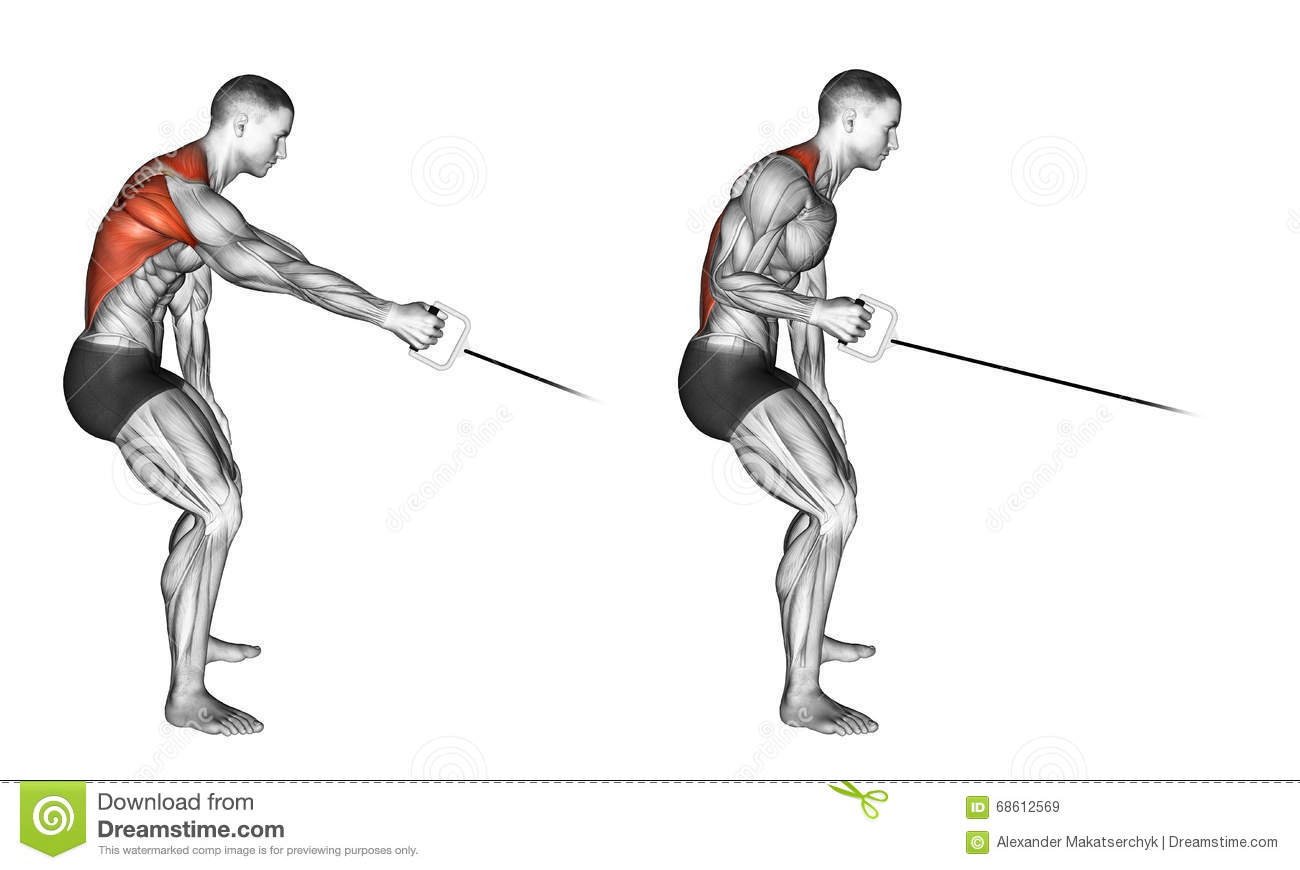 Exercising Standing One Arm Cable Row Stock Illustration