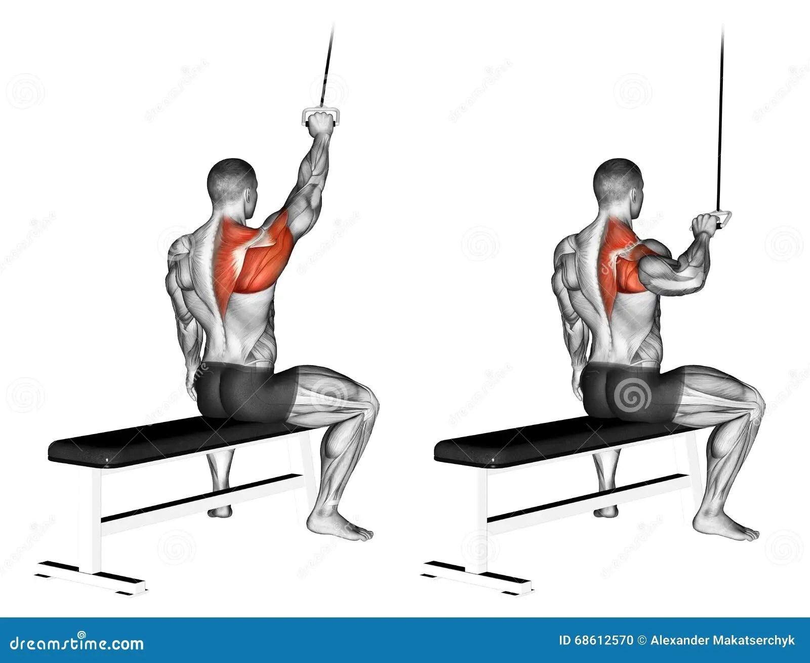 Exercitar Se Entregou O Pulldown Do Lat Ilustracao Stock