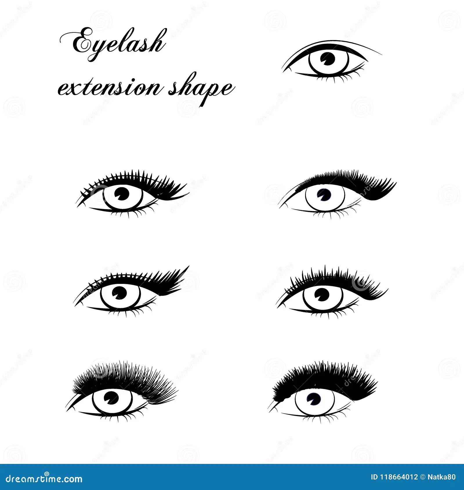 Eyelash Extension Shape Stock Vector Illustration Of