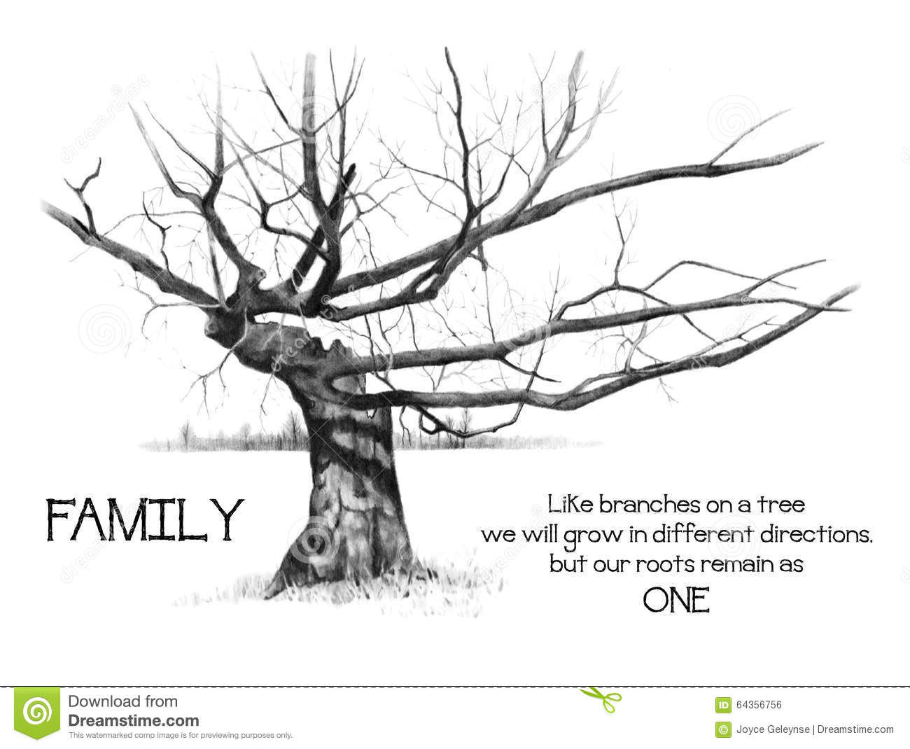 Family Roots With Gnarly Tree Pencil Drawing Stock