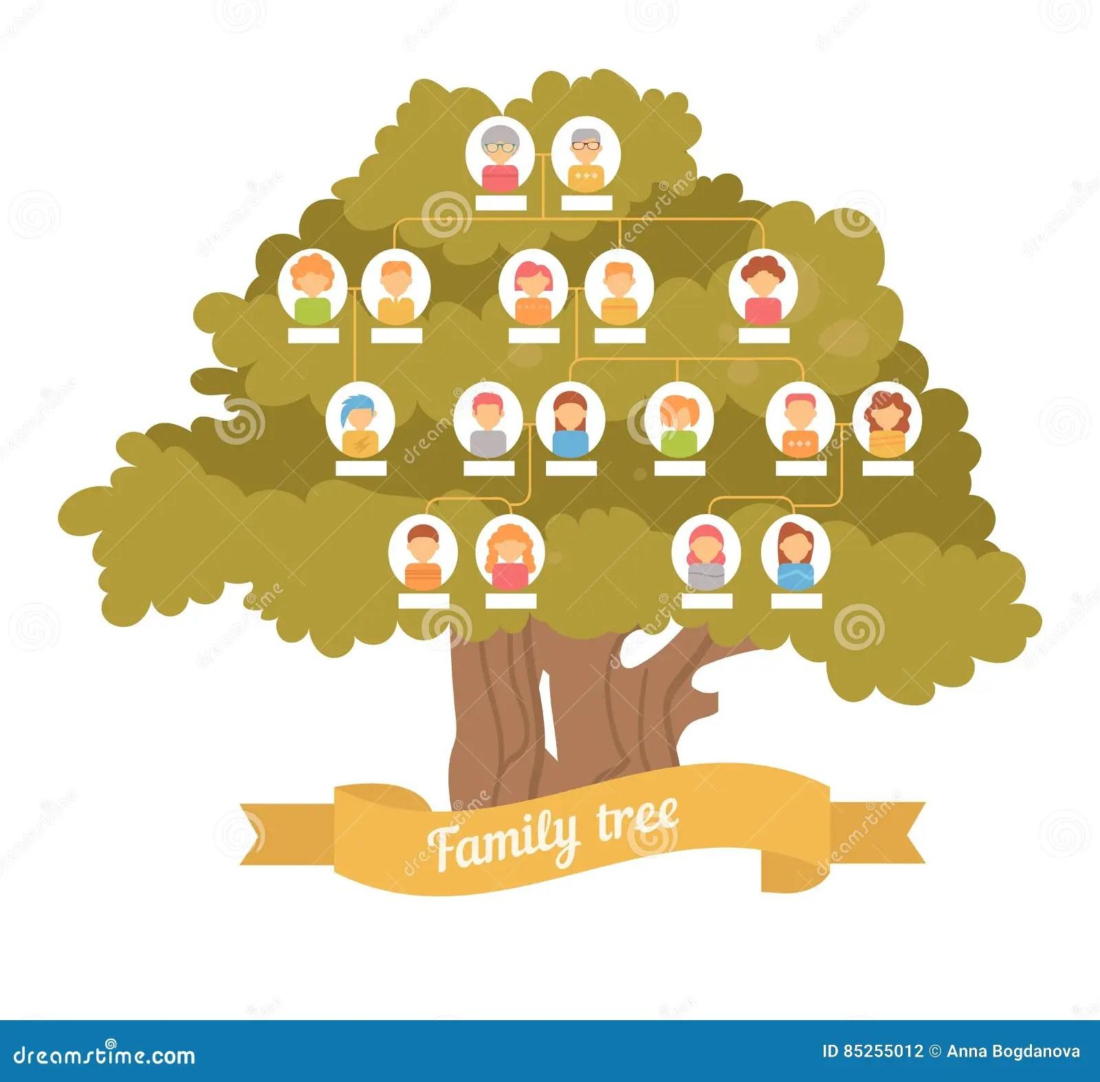 Family Tree Genealogy Stock Vector Illustration Of Frame