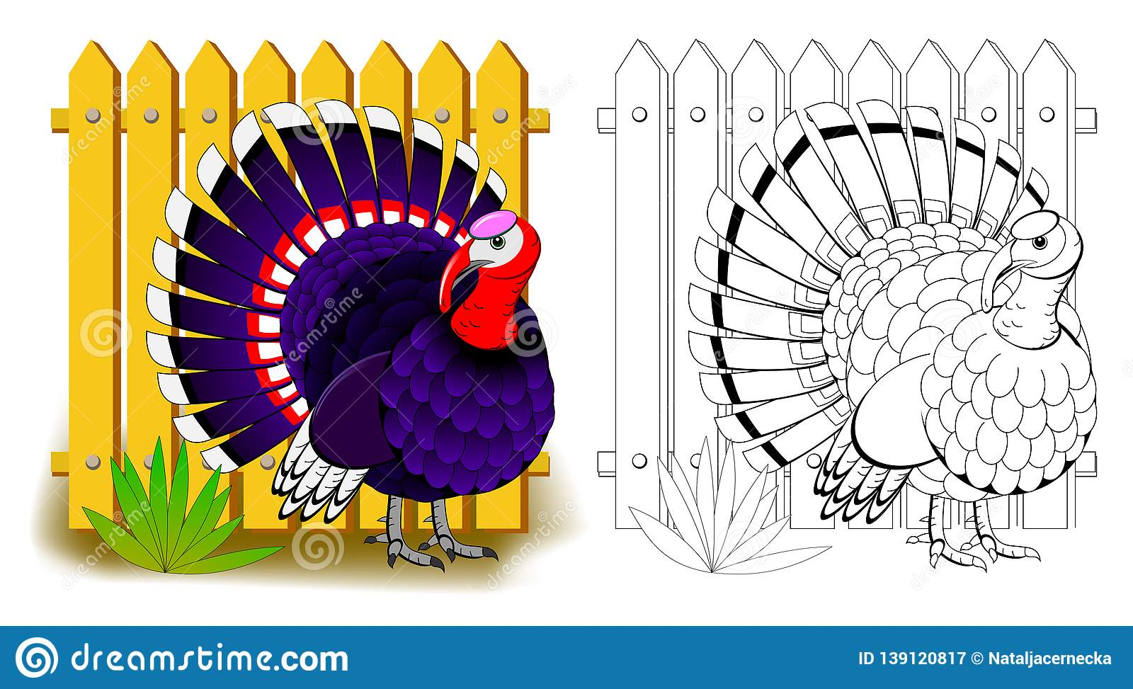 Fantasy Illustration Of Cute Turkey Colorful And Black