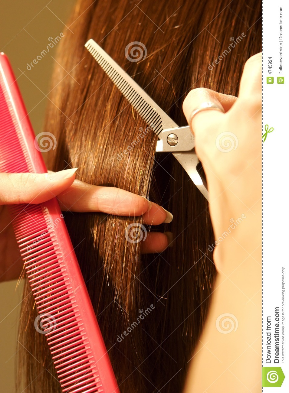 Female Hair Cutting At A Salon Stock Images Image 4745924