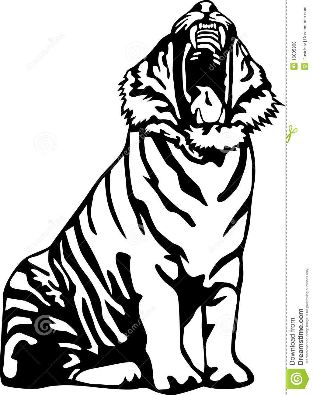 Ferocious Tiger Stock Vector Illustration Of Animal