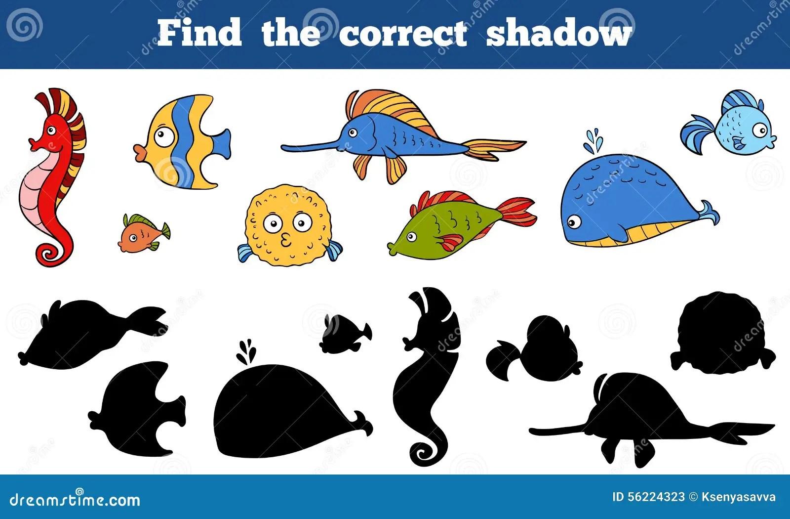 Find The Correct Shadow Sea Life Fish Sea Horse Whale