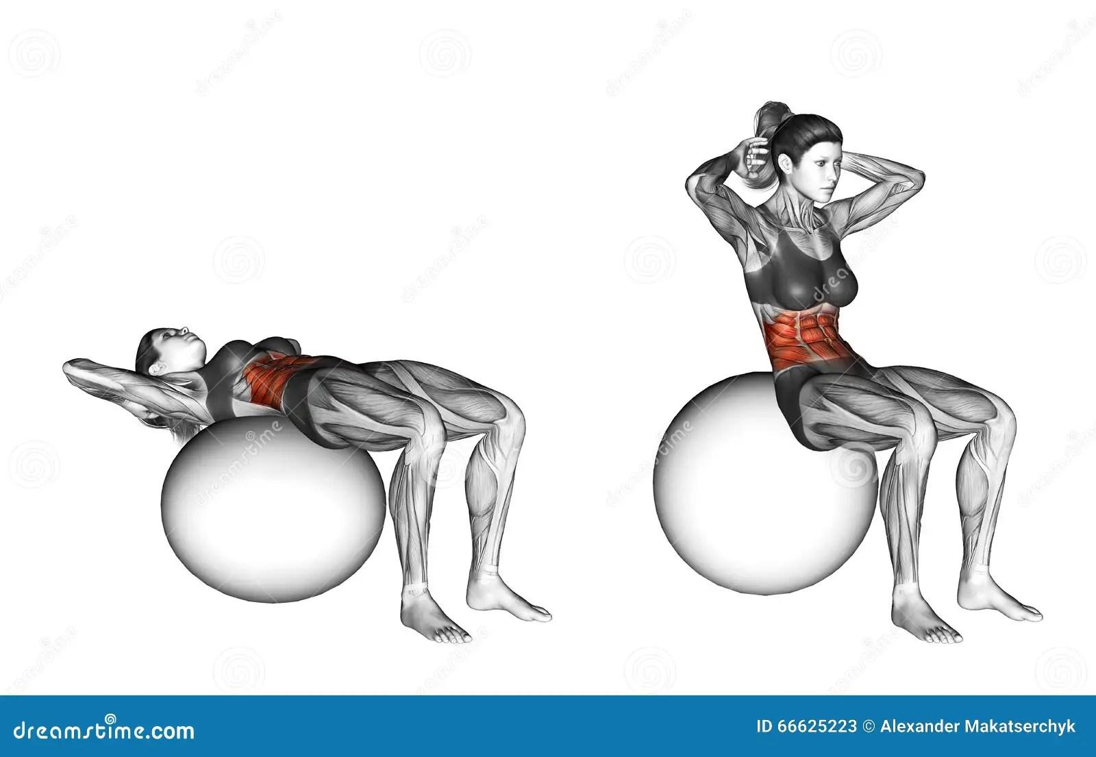 Fitball Exercising Ball Crunch Female Stock Illustration