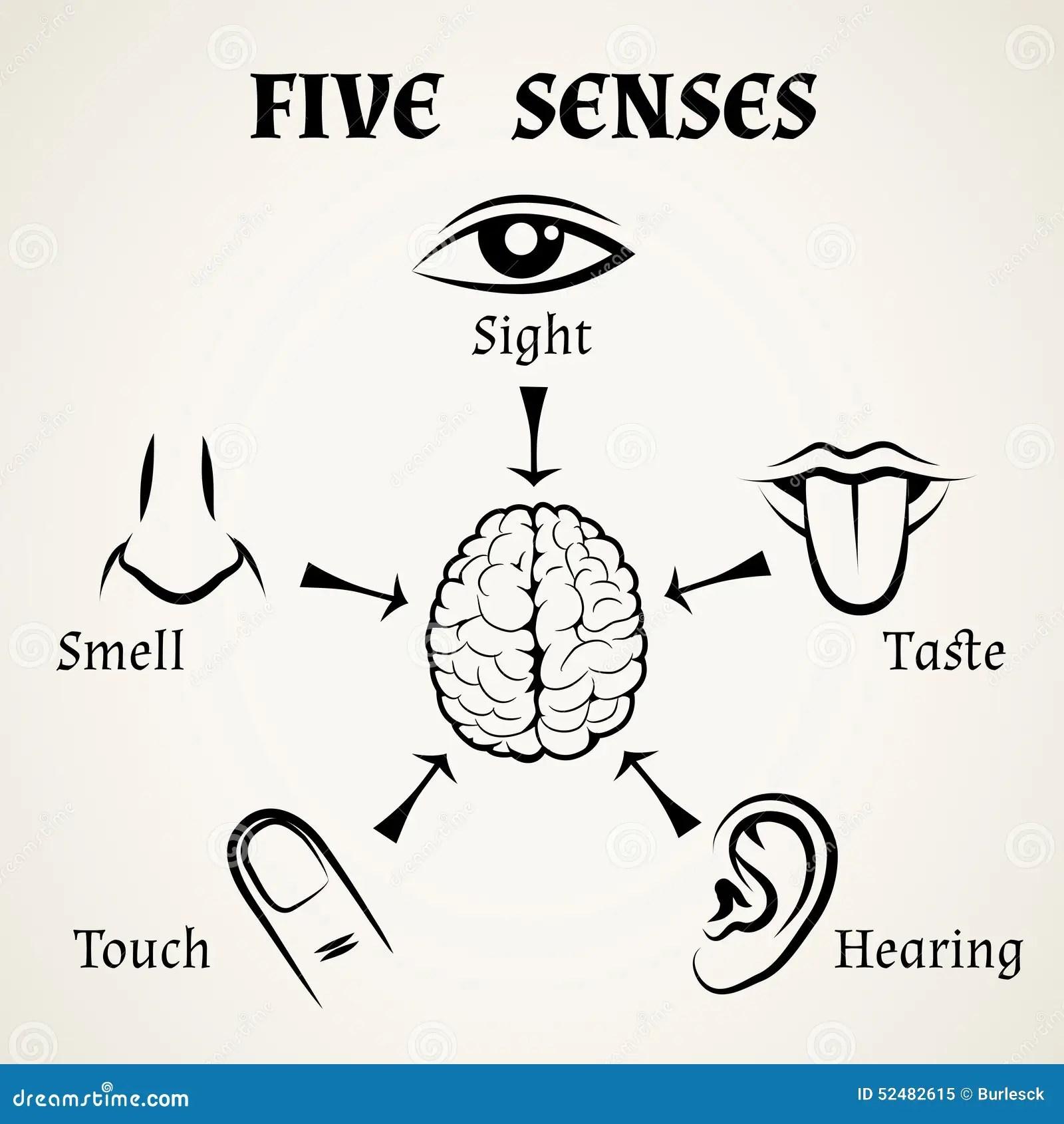 Five Senses Icons Stock Vector Illustration Of Finger