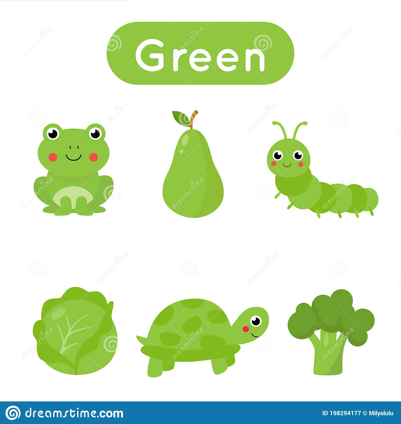 Flash Cards With Objects In Green Color Educational