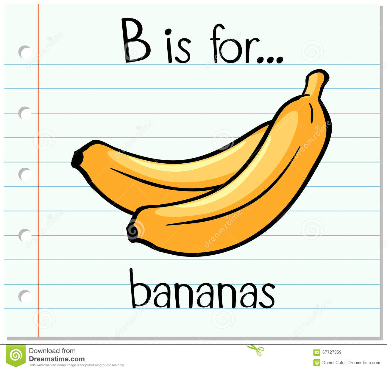Flashcard Letter B Is For Bananas Stock Vector