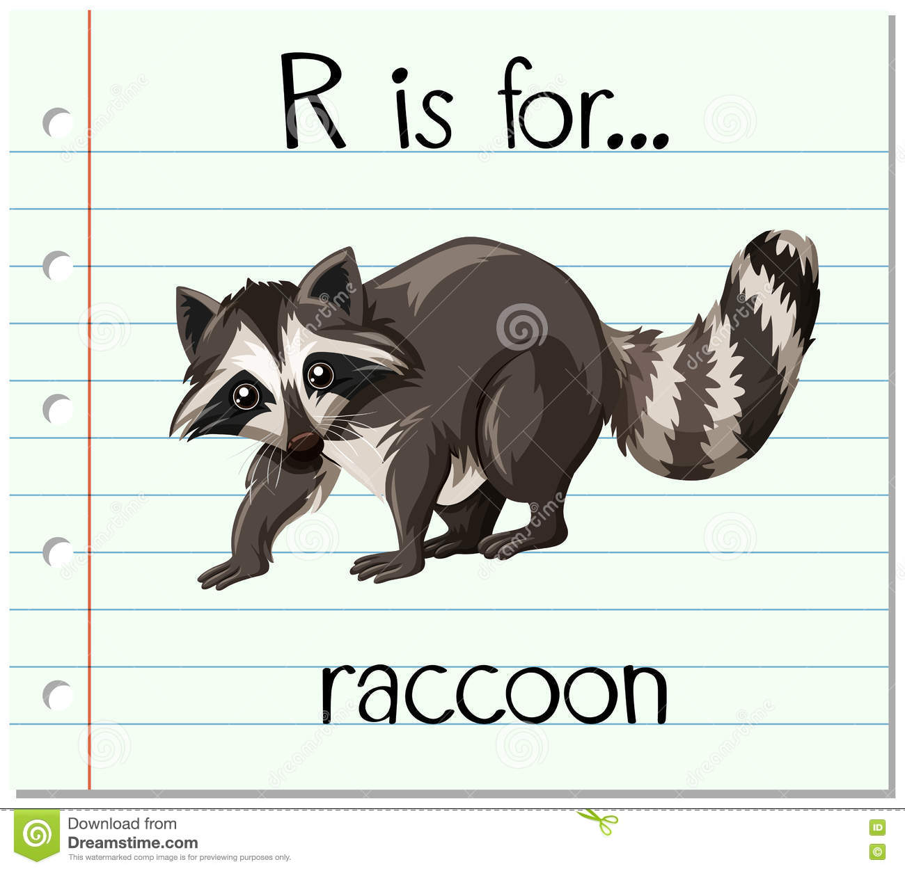 Raccoon And Letter R Royalty Free Stock Photography