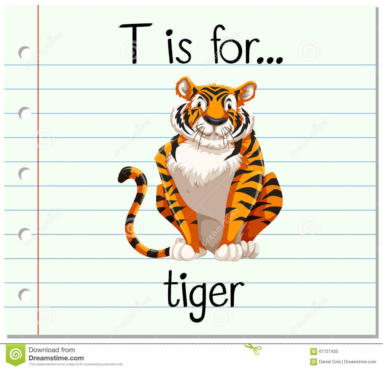 Flashcard Letter T Is For Tiger Stock Vector