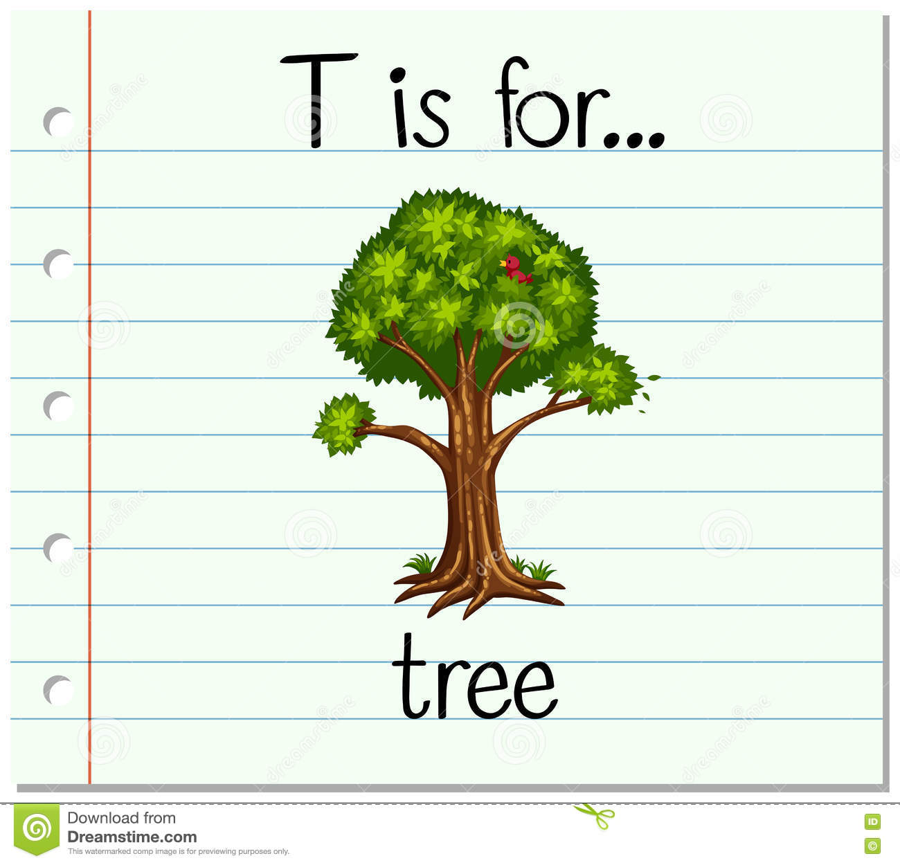 Flashcard Letter T Is For Tree Stock Vector