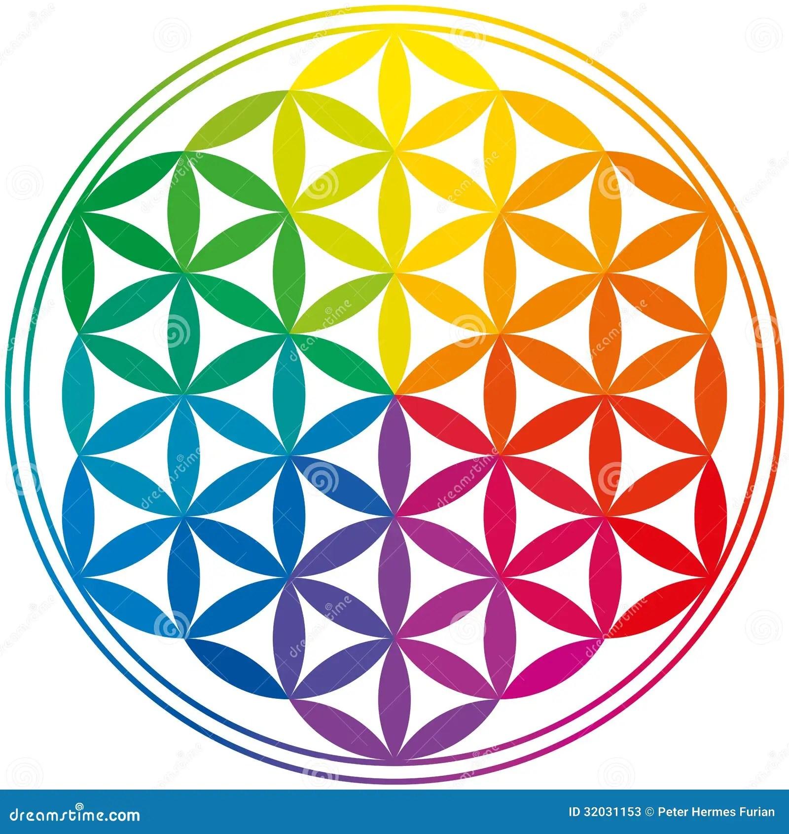 Flor De Cores Do Arco Iris Da Vida Ilustracao Do Vetor