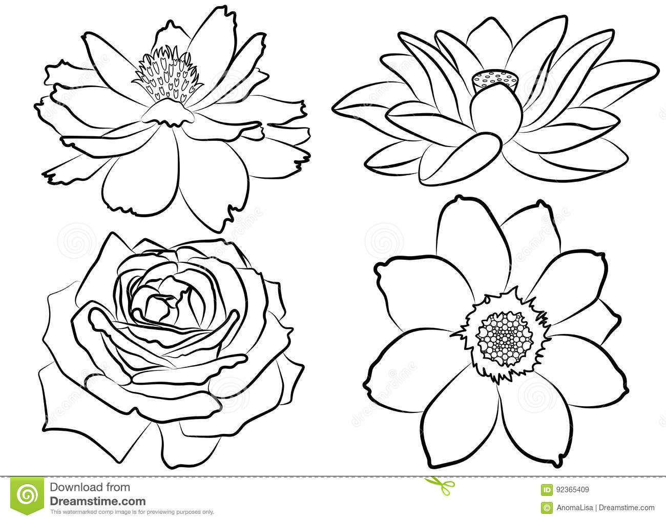 Floral Coloring Page Stock Vector Illustration Of