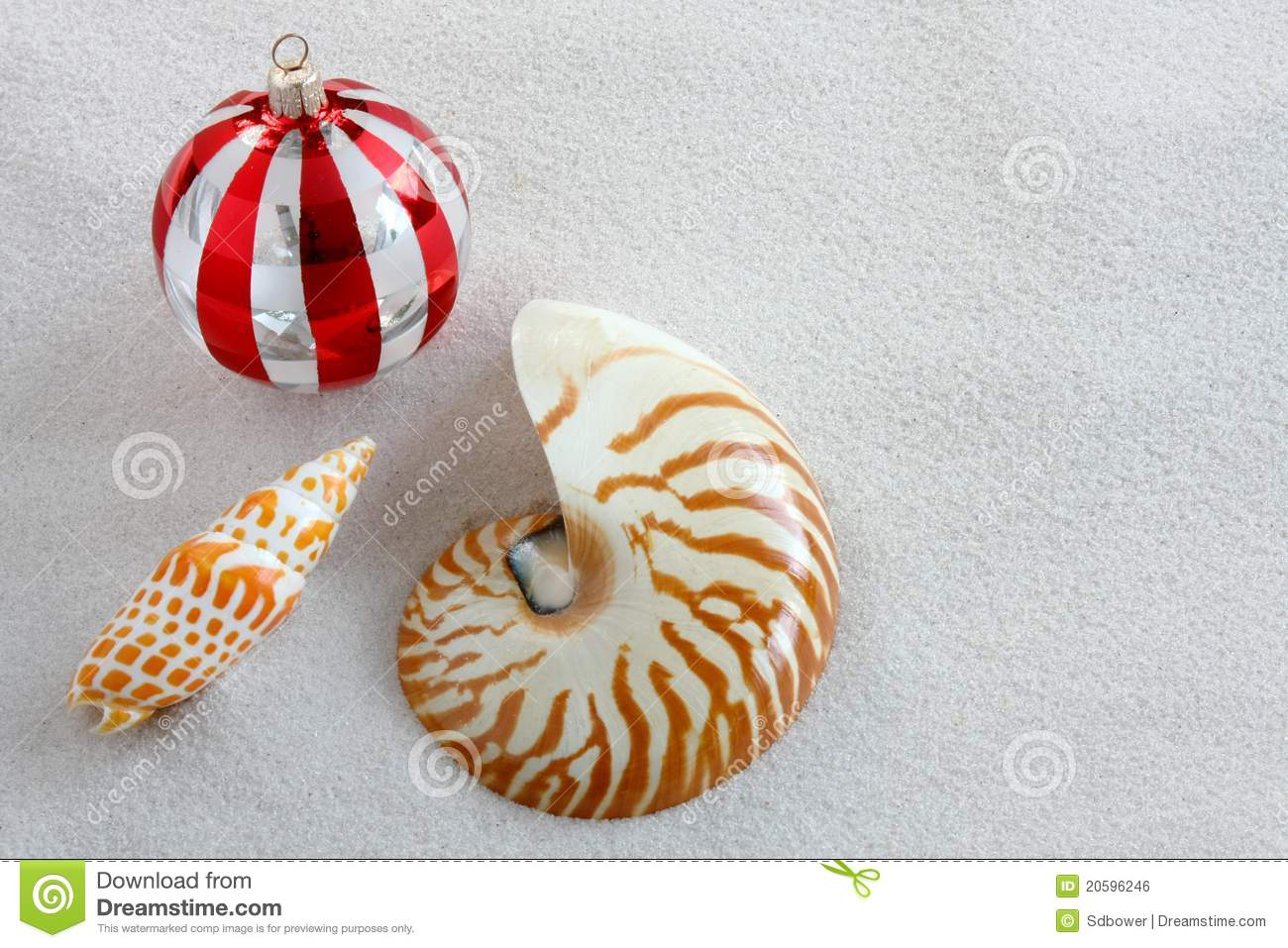 Florida Christmas Ornaments On White Sand Stock Photo