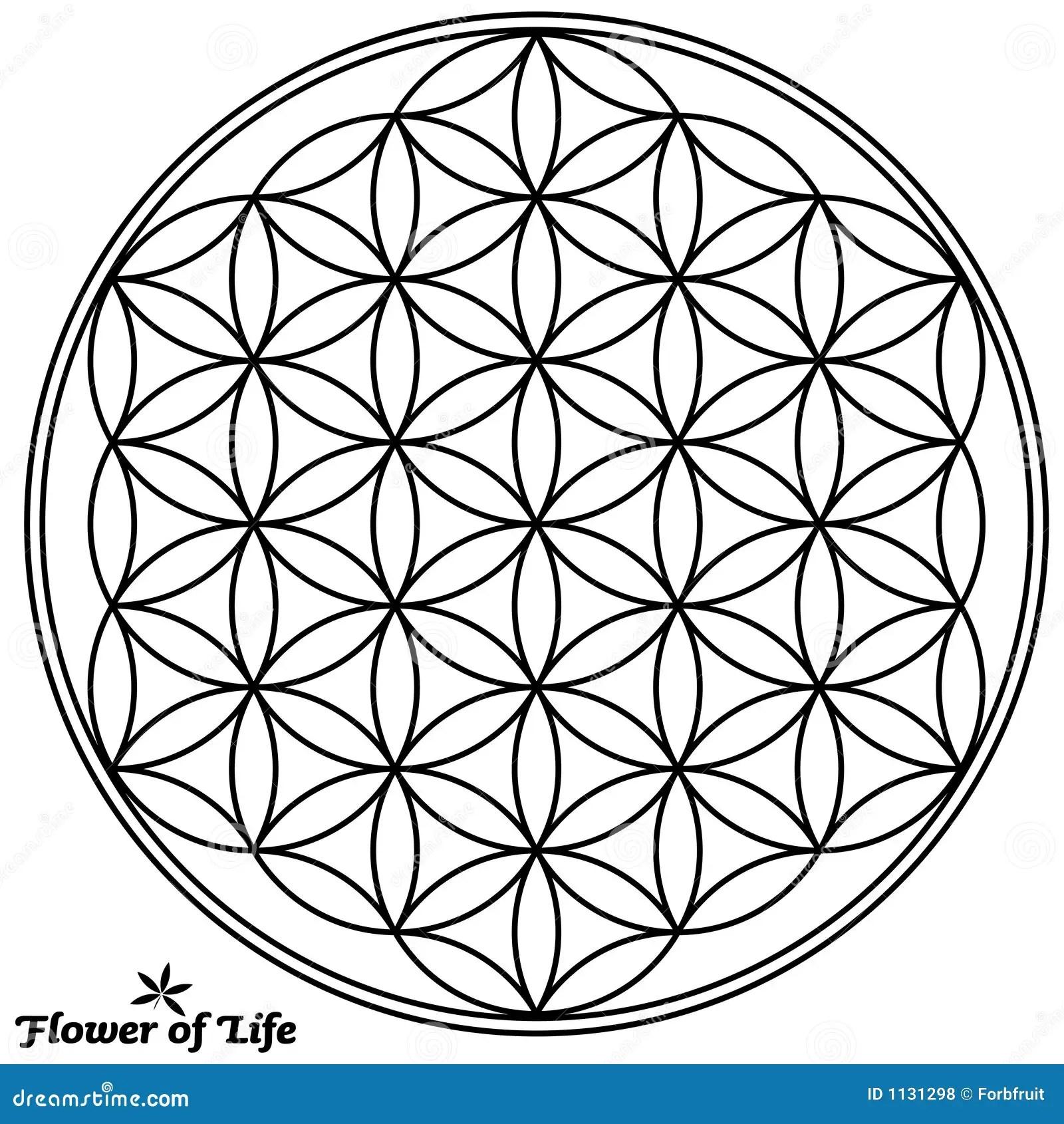 Flower Of Life Yin Yang Spheres Cartoon Vector