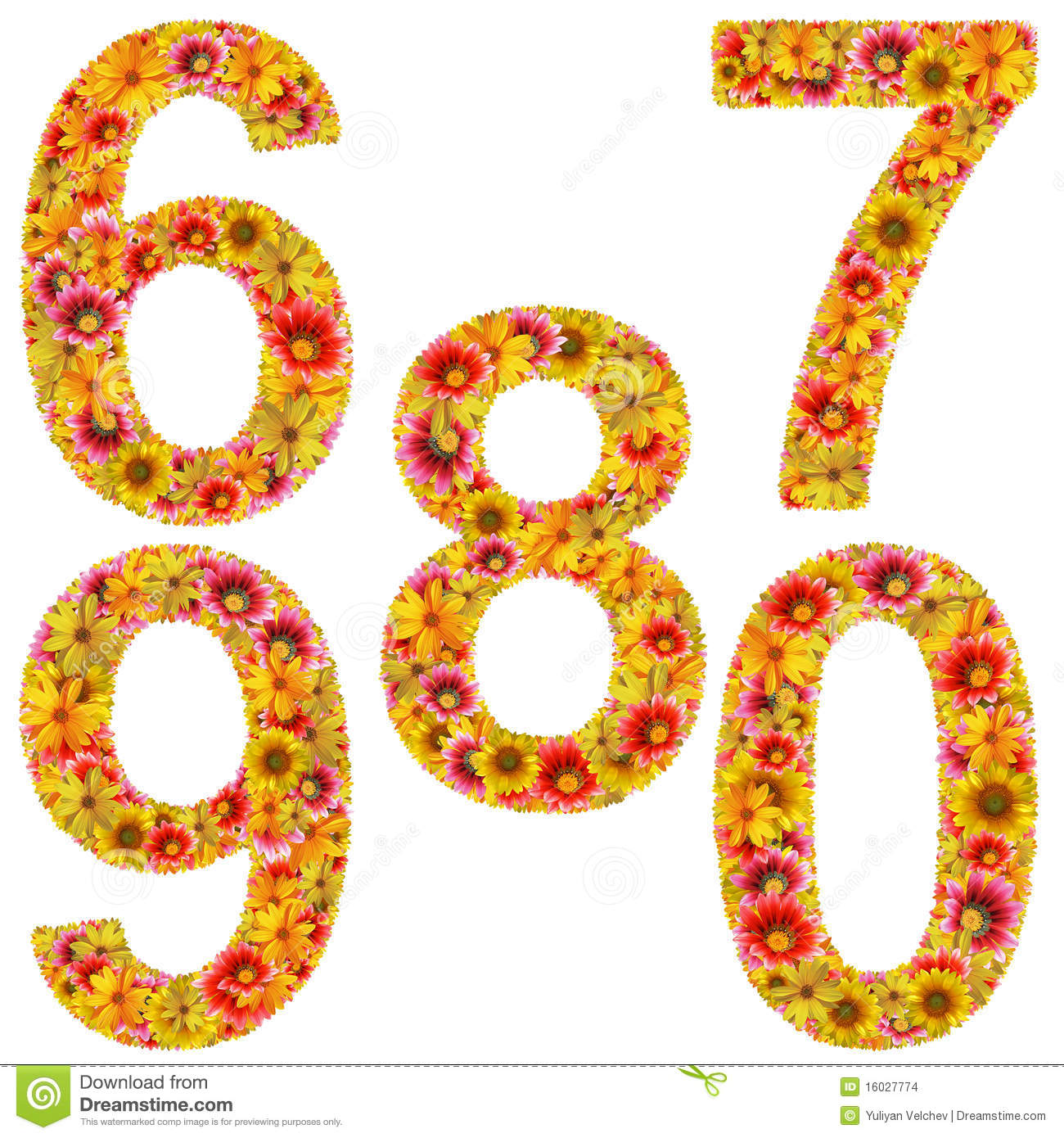 Flower Number 6 0 Stock Illustration Image Of Decoration