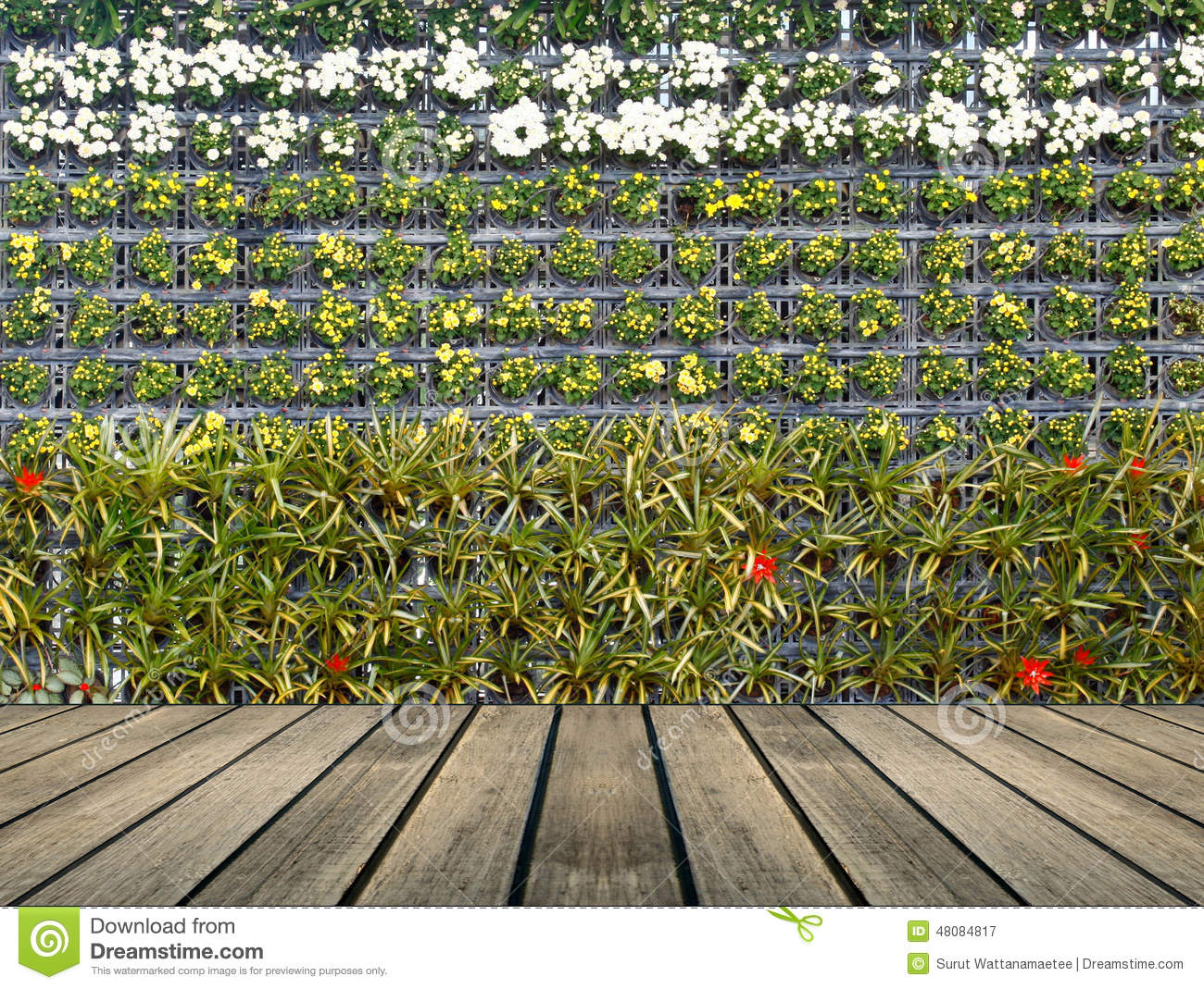 Vertical Garden Wall Plans